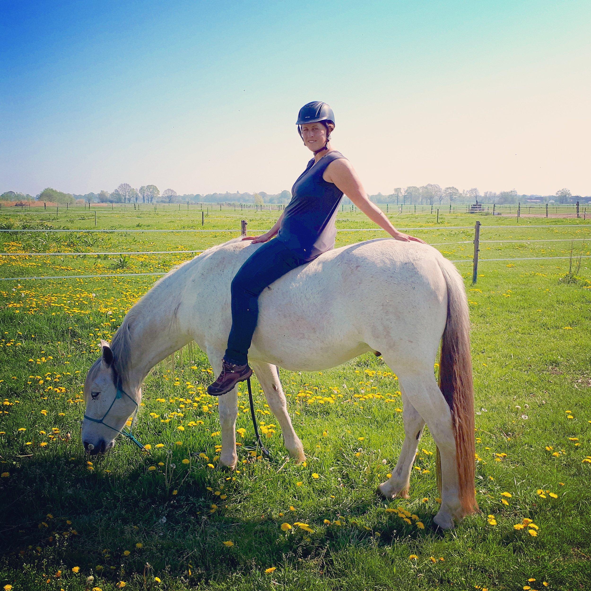 elearning natural horsemanship.jpg