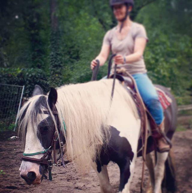 Hoera, weer een ruiter die overschakelt naar #bitloos! . #naturalhorsemanship  #bitless  #westernriding  #paardenliefde