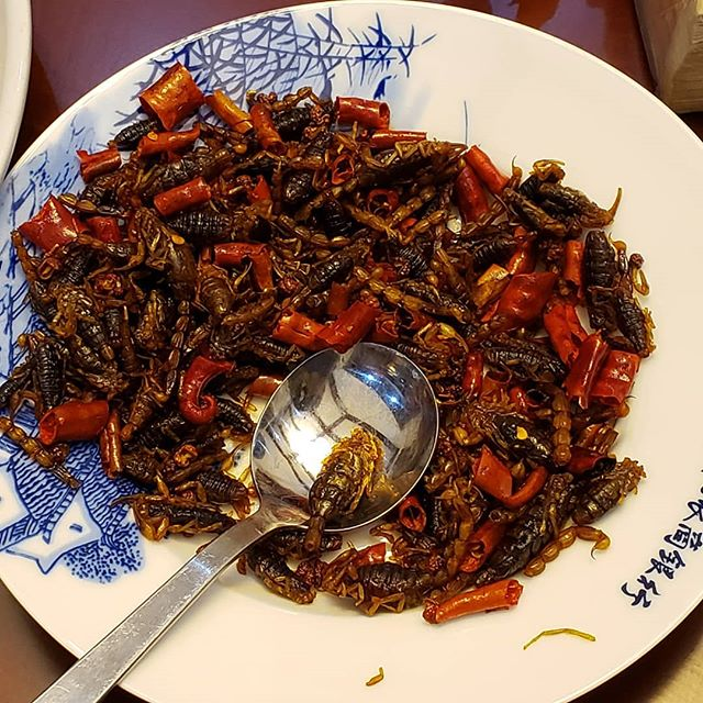 48 hours in and so far we've tried duck heart and these spicy scorpions. Tastes like a dried, extremely hot pepper-just in case you were wondering. When in China...