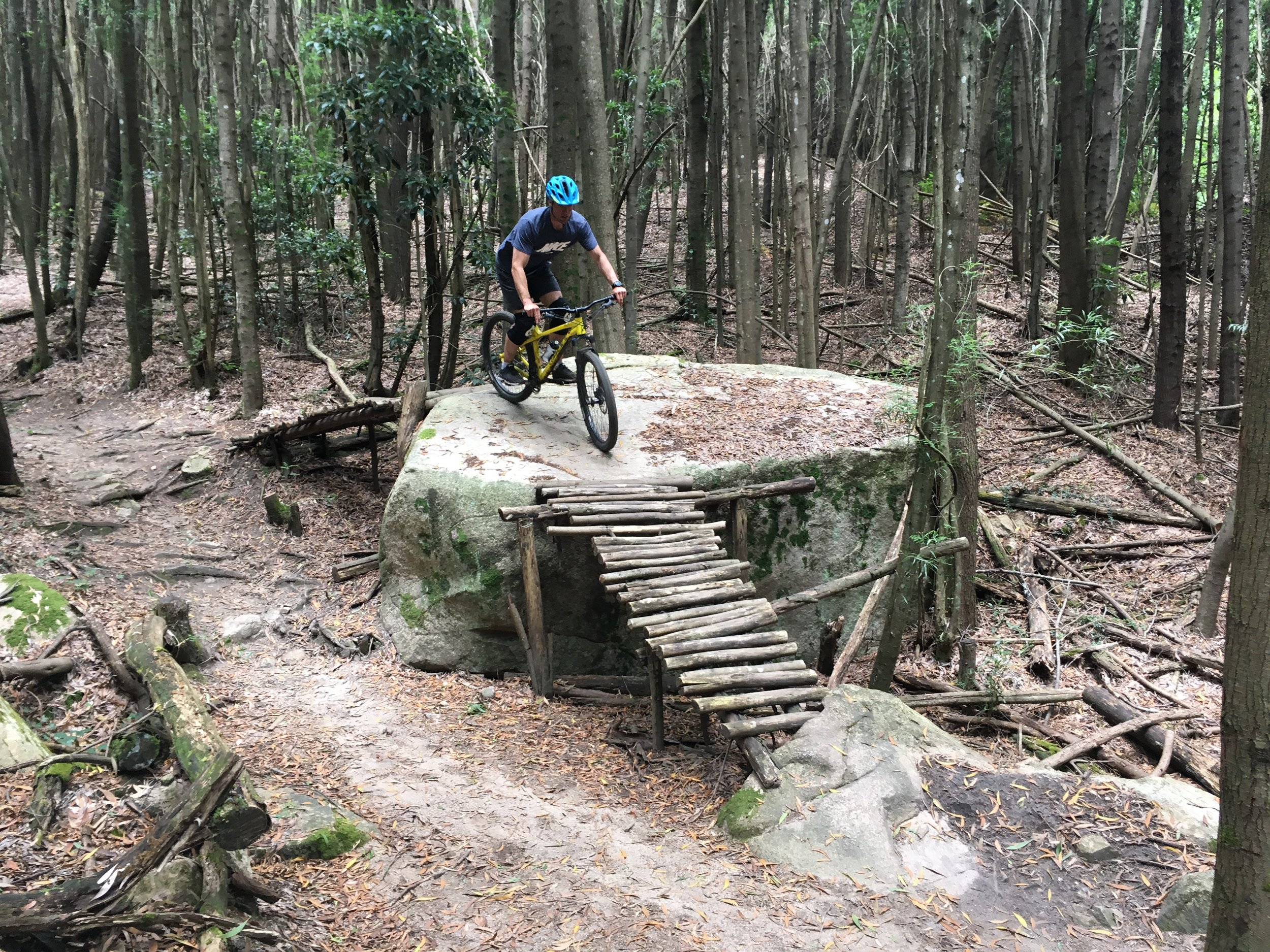 Sintra Mountain Bike Tour - Dimas trail