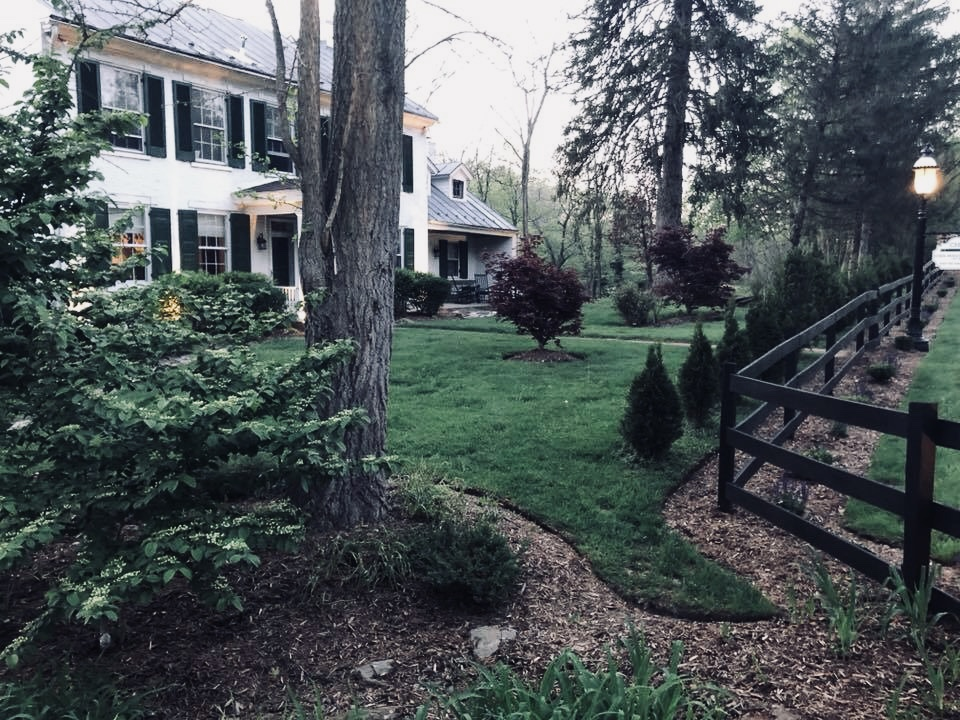 April 2018 - new fence and plantings