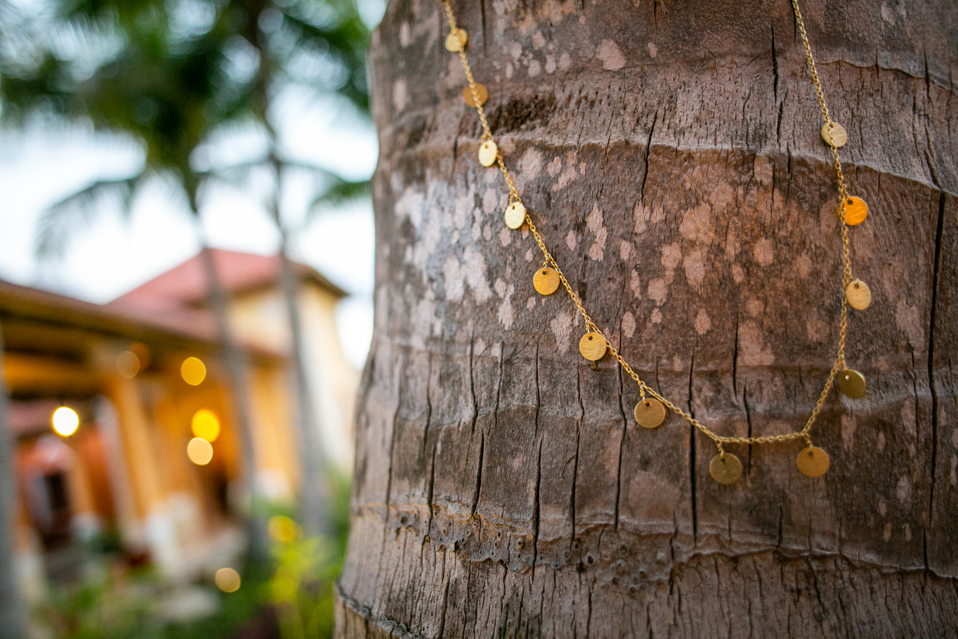 Susan Rifkin  necklace on palm tree
