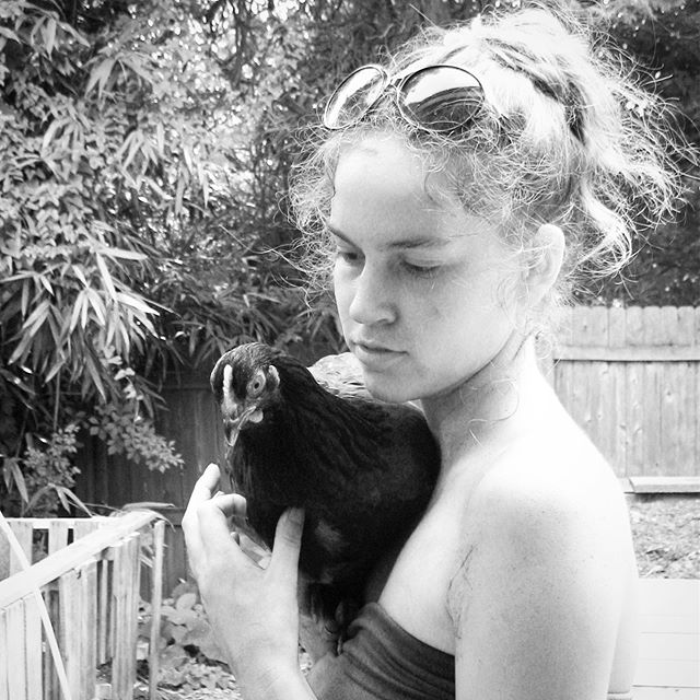 Oh hey, I remember this girl! Throwback a decade or so to 22. I can't wait to have chickens again. I may or may not be scheming over here ... #RhodeIslandRed #Chickens #Narberth
