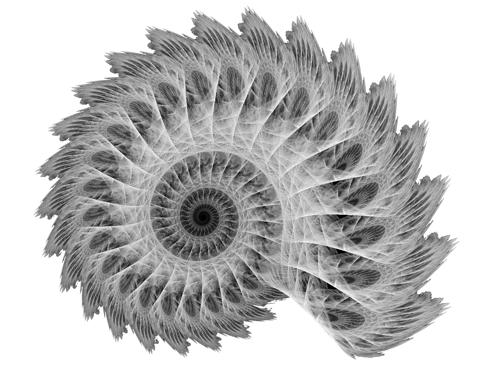 white_spiral_by_thelma1-d3htrvt.jpg