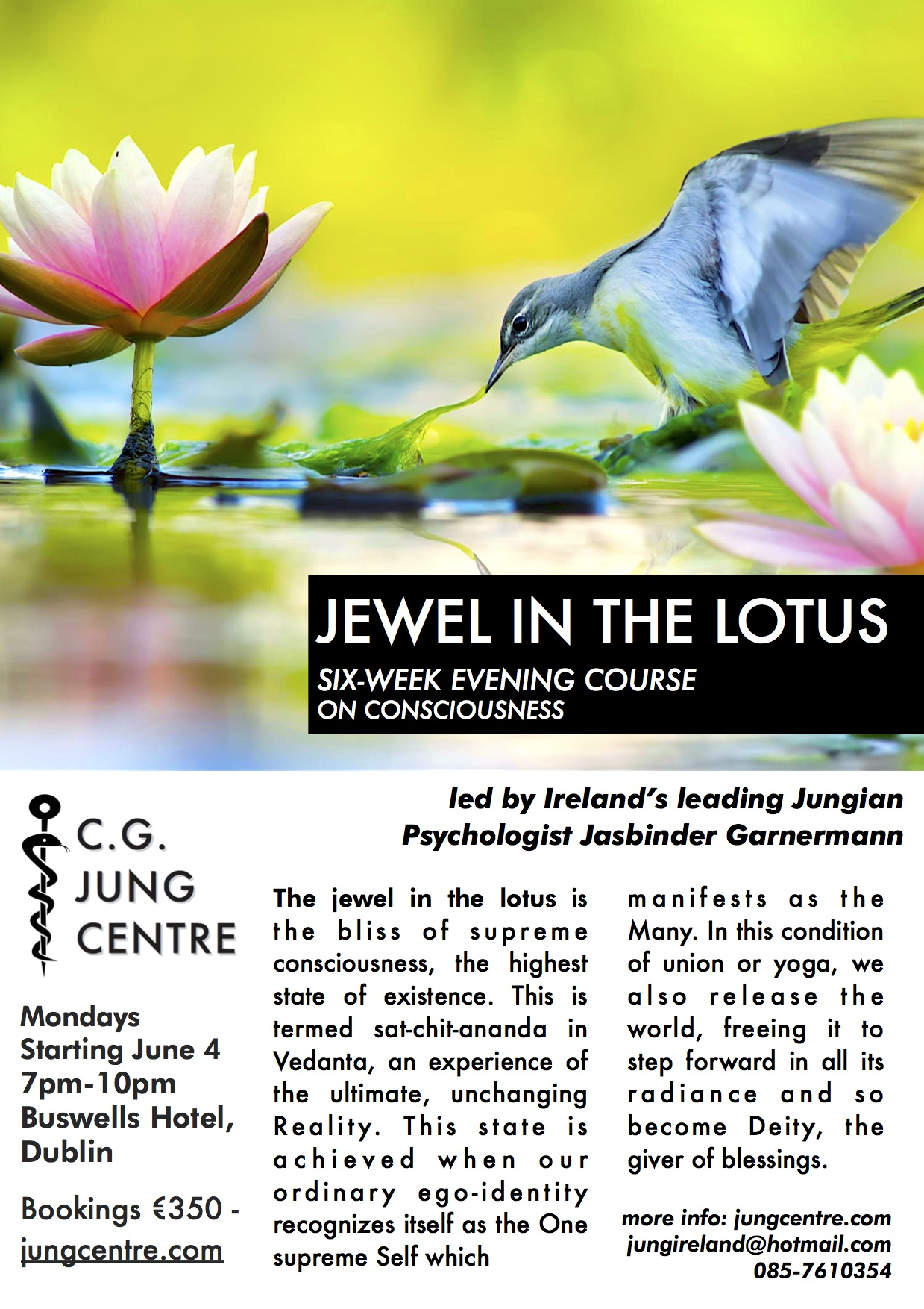 jewel in the lotus consciousness course