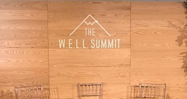 2017 W.E.L.L. Summit Stage