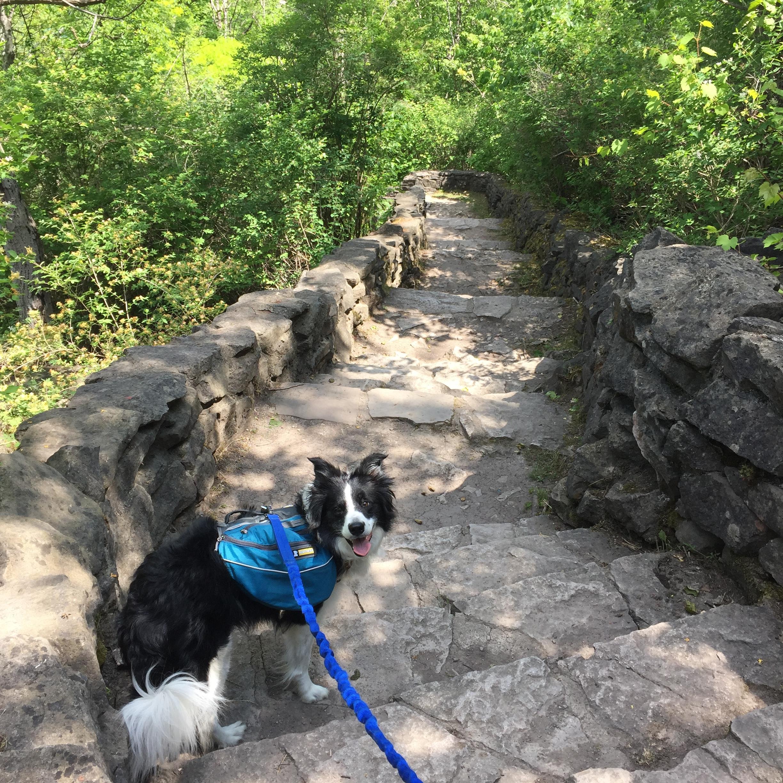 Jill at Niagara Gorge.jpg
