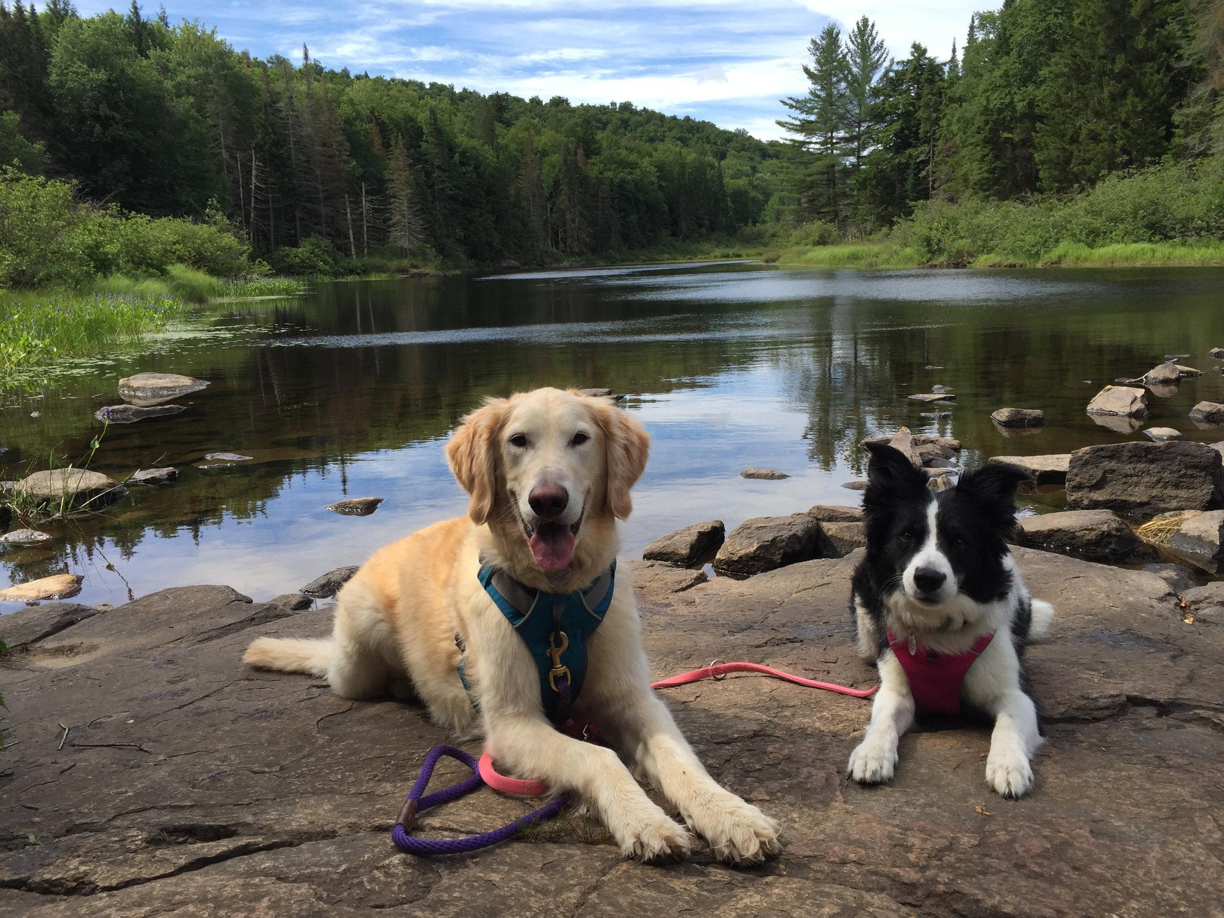 L and J at Buttermilk Falls, Long Lake.jpg