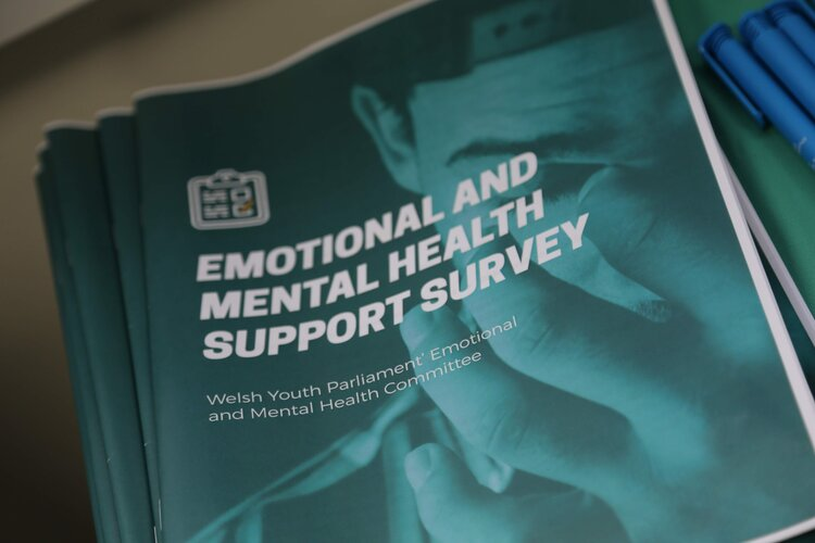 The Emotional and Mental Health Committee's survey