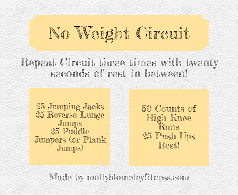 no-weight-circuit-2 (1).png
