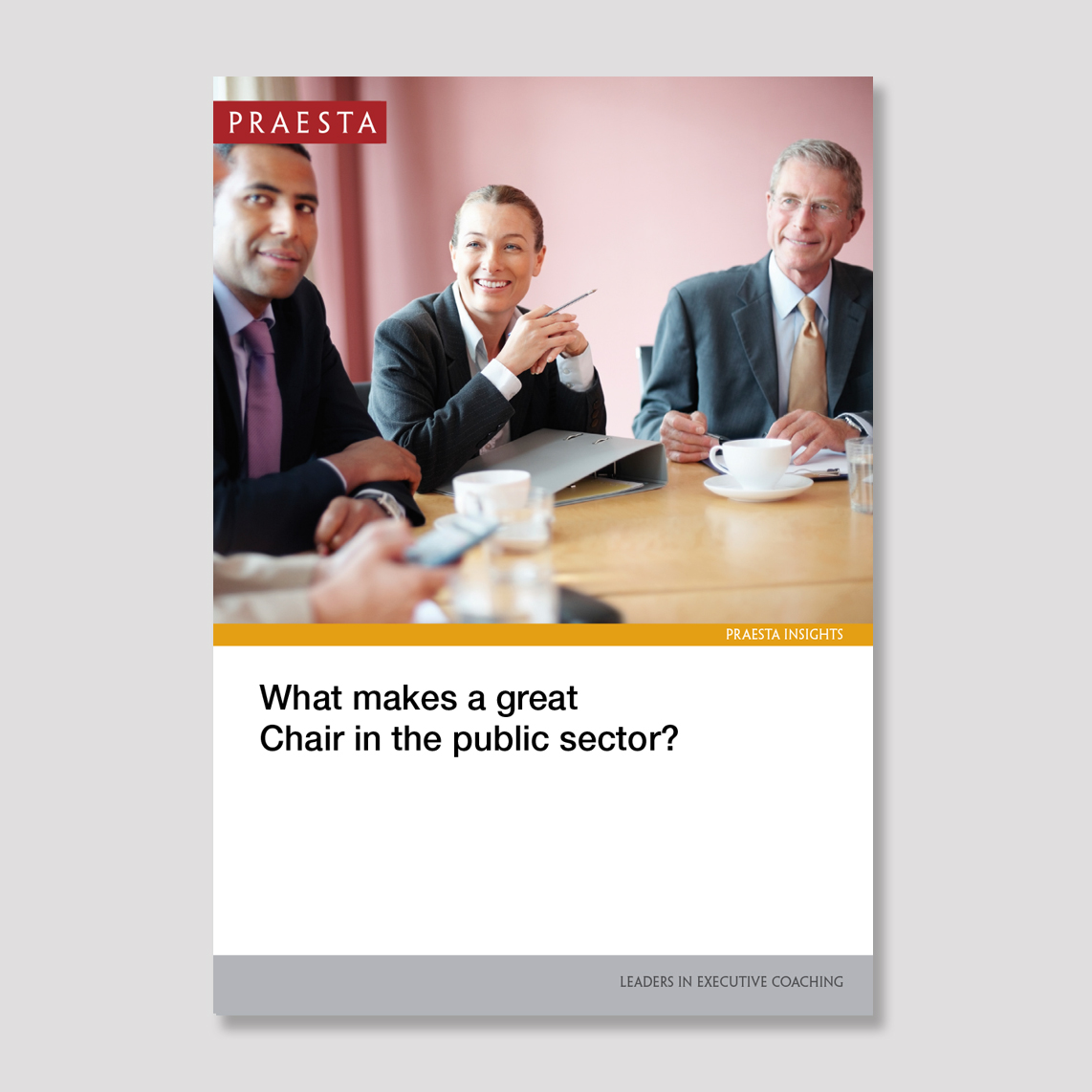 What Makes a Great Chair in the Public Sector?   In the UK public sector there is a wide range of bodies of different kinds that support the business of Government. Their nature and numbers may change over time, but they remain an important part of the landscape.   Download PDF