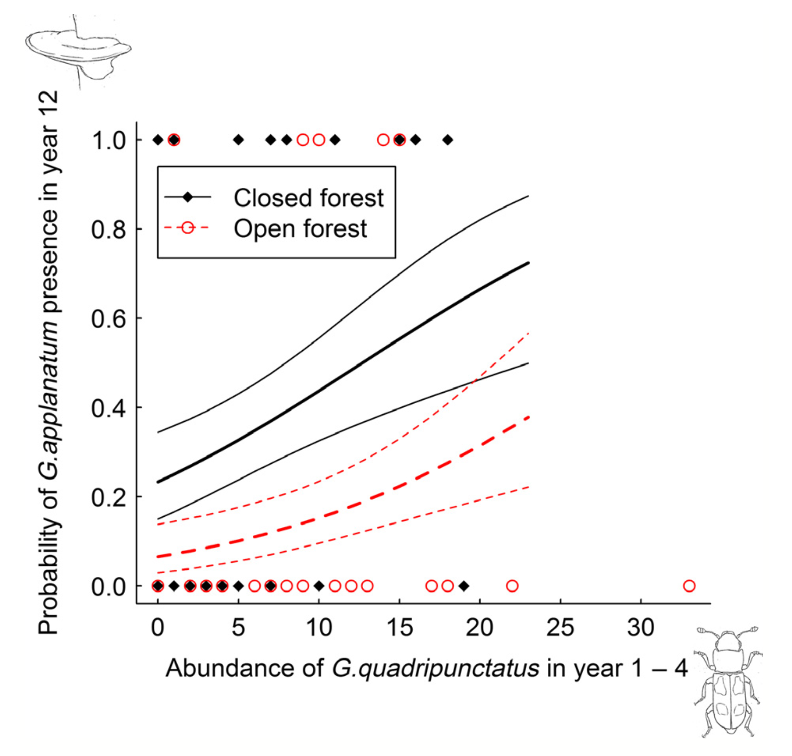 Prediction of G. applanatum presence as a function of  G.quadripunctatus abundance.