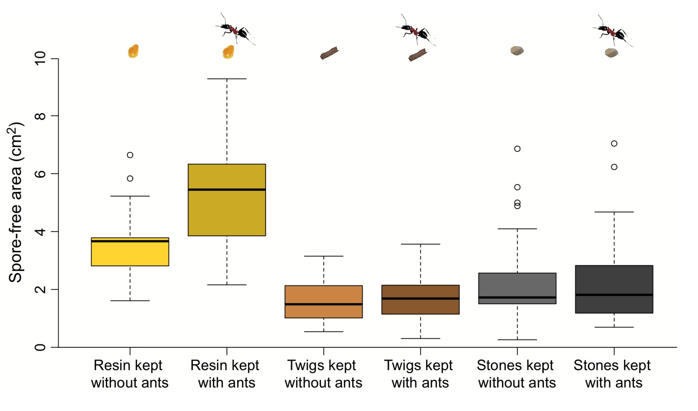 Fungal inhibition as a function of nest object and treatment. Timothée Brütsch  et al. 2017 .