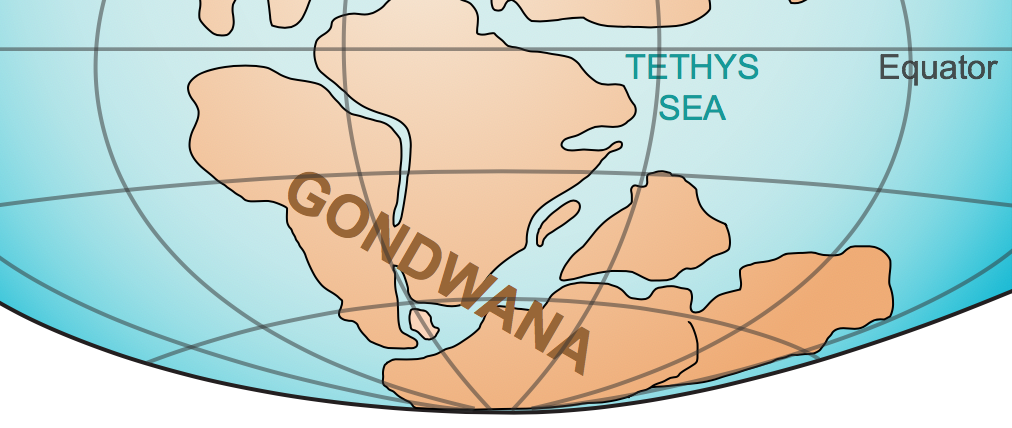 The supercontinent  Gondwana .