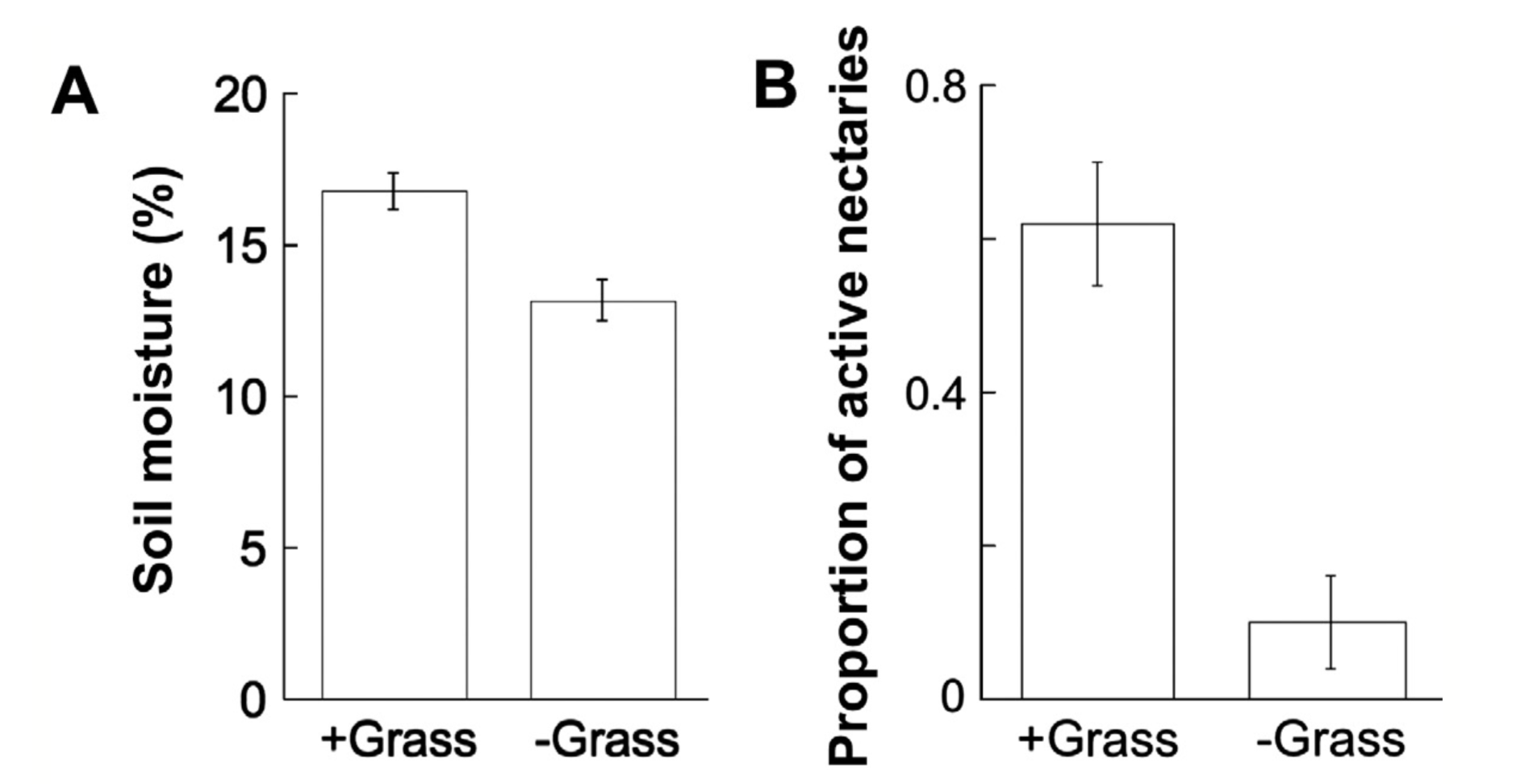 The precence of grass enhanced soil moisture. With more available water, more sugar can be produced. Palmer et al. 2017 .
