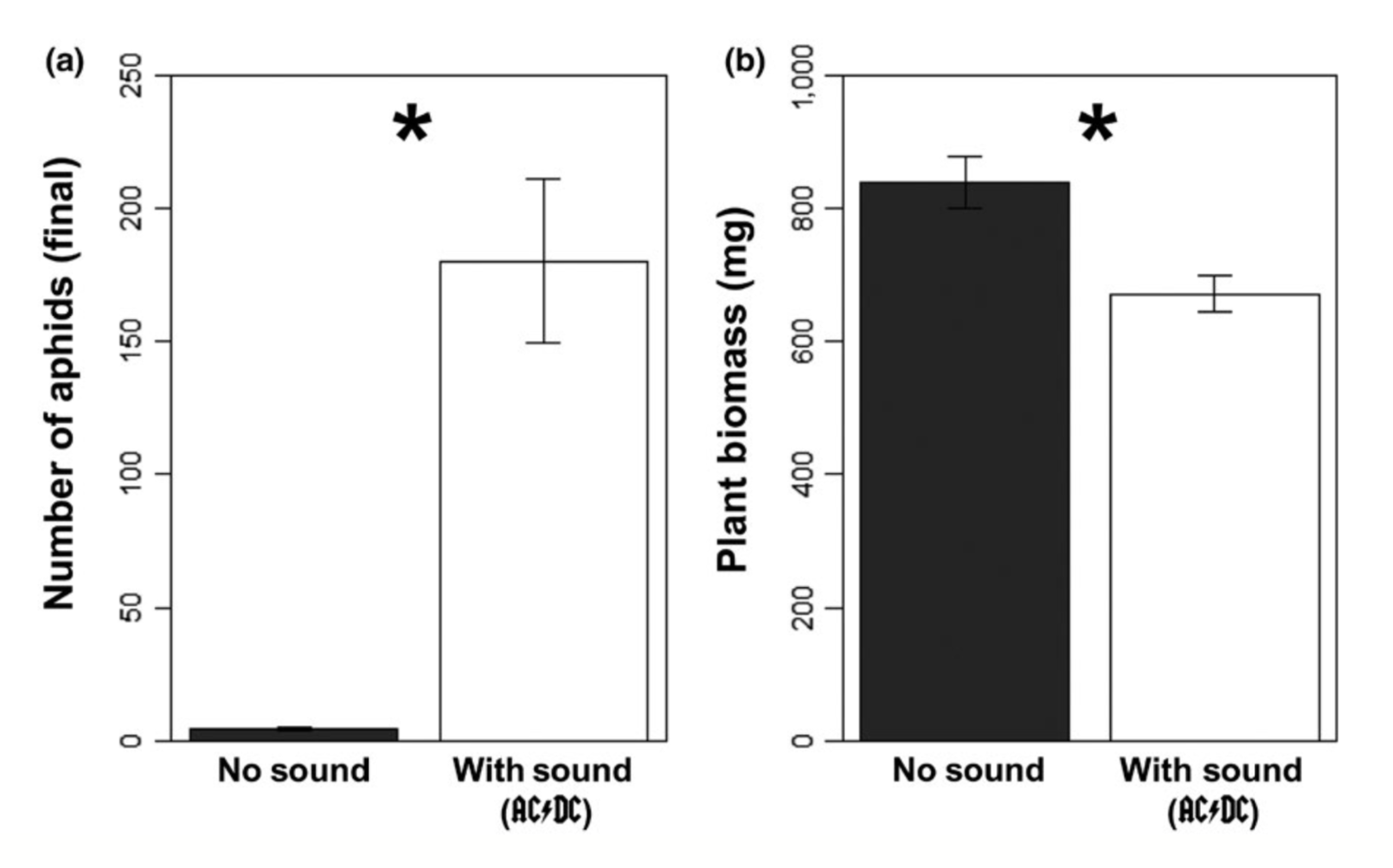 Music by AC/DC reduced predation by ladybugs allowing densities of aphids to explode (a). With more aphids feeding on soybean plants, plant biomass was significantly reduced when the classic rock was playing (b). Barton et al. 2018 .