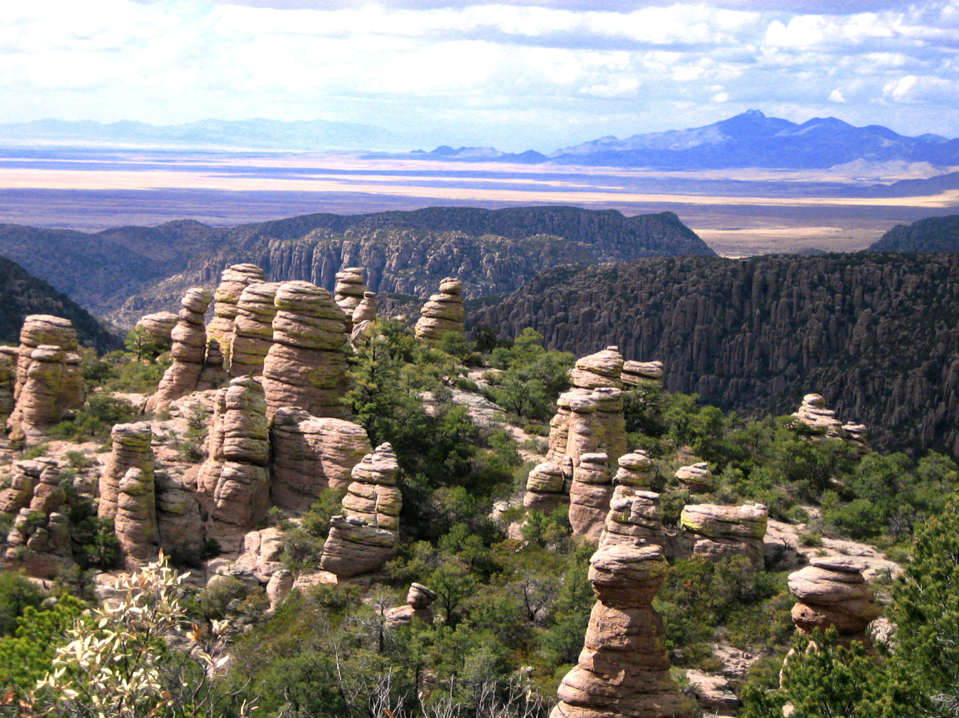 High elevation region of a section of the Madrean Sky Islands in Arizona.