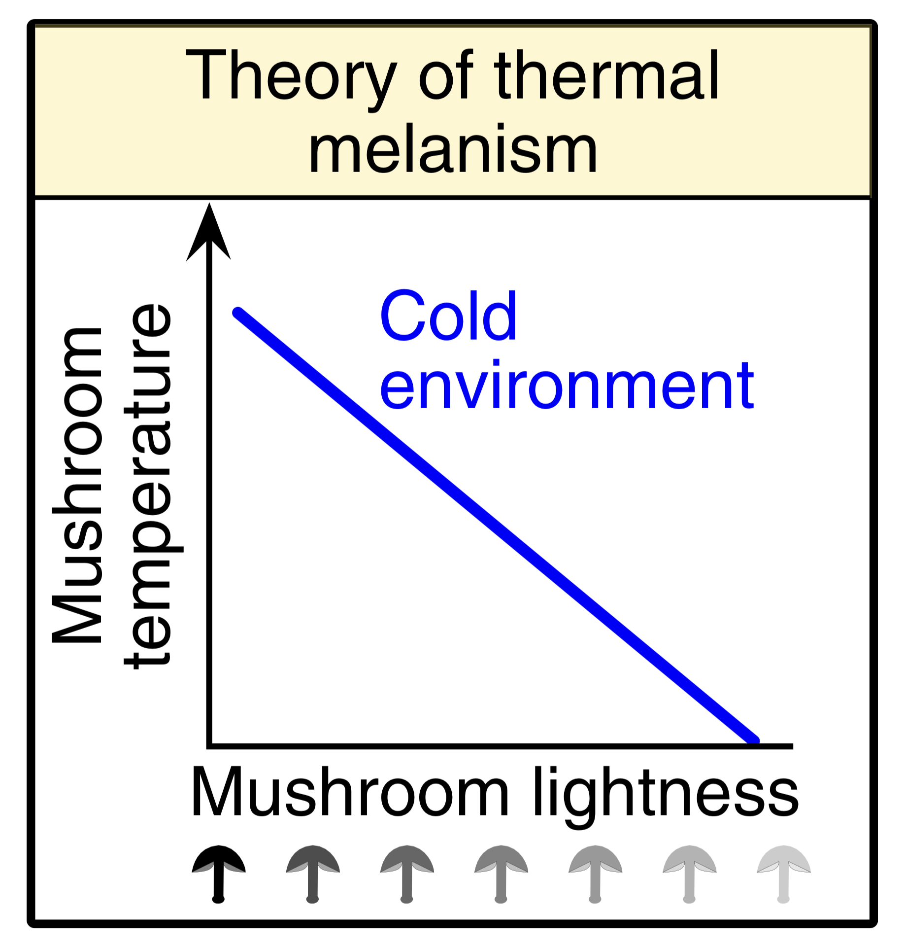 Thermal melanism theory. Dark colored mushrooms should dominate cold environments while light colored mushrooms dominate warm environments.  Krah et. al 2019 .