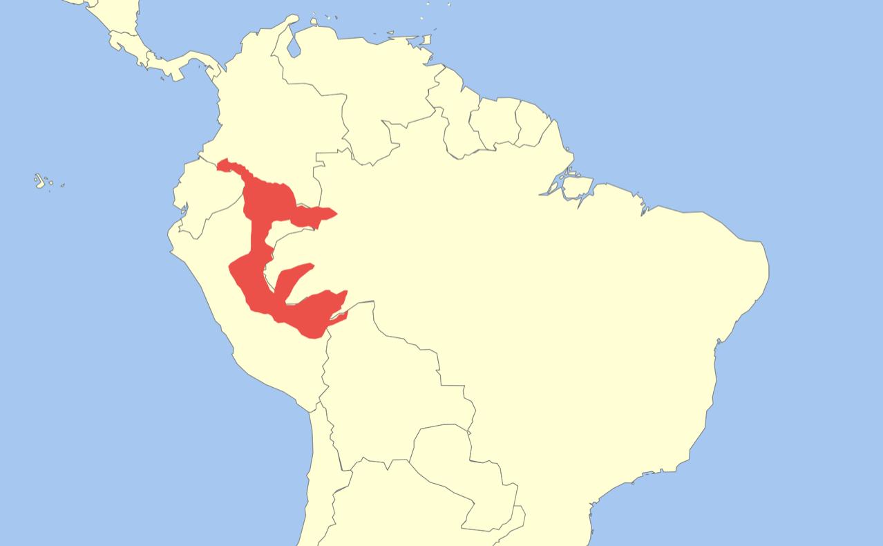 Distribution of  Callimico goeldii.