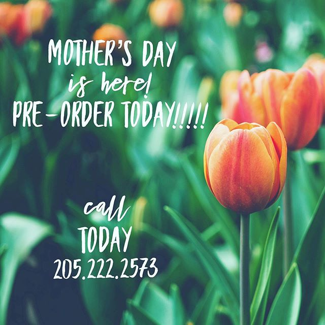 Have you ordered yet? #wherewillyourflowersgo #mothersday #mothersdaygifts #differentisgood #offbeatblooms #ourclientsareawesome