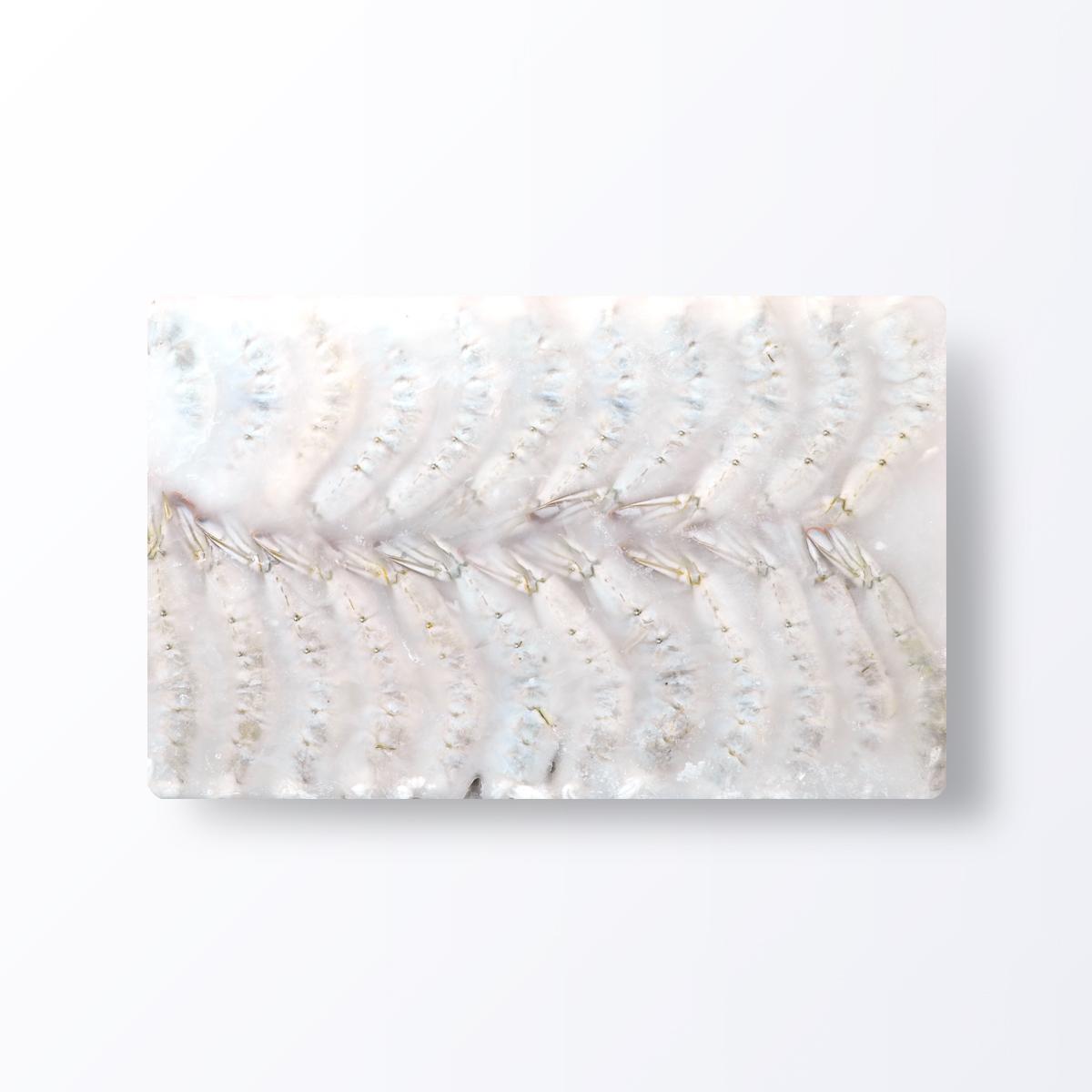 SHR175-Shrimp-Vannamei-Headless-Shell-On.JPG