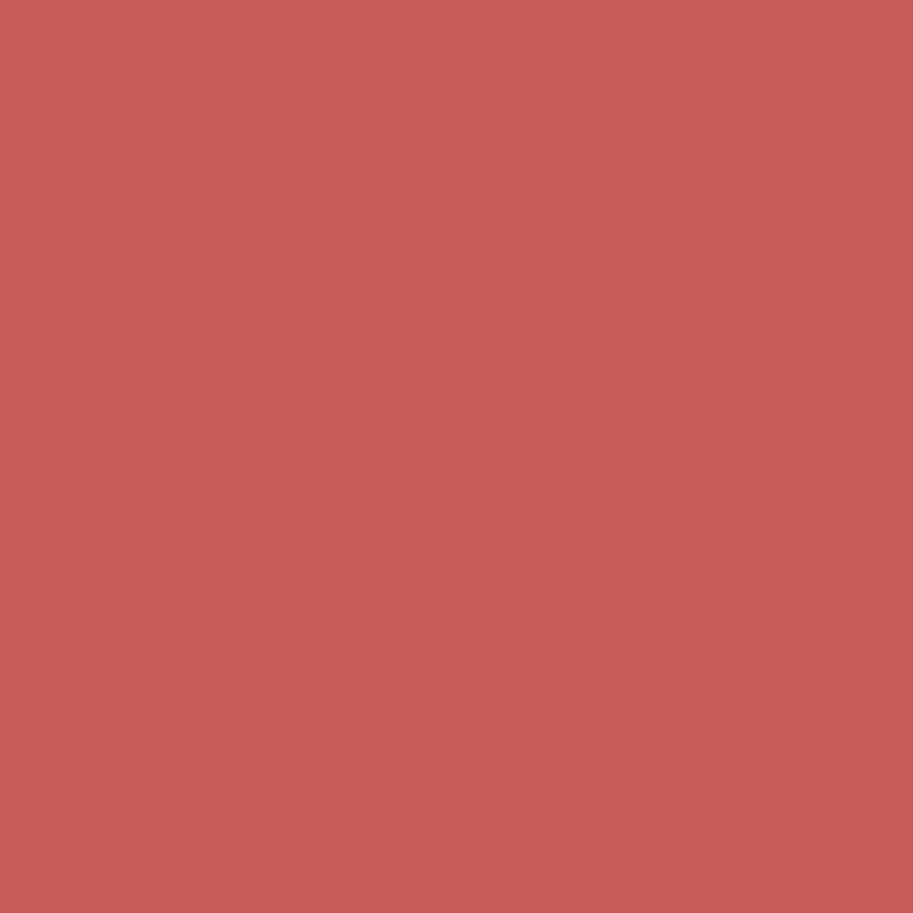 Fort Point Red RGB 203-91-90 #CB5B5A