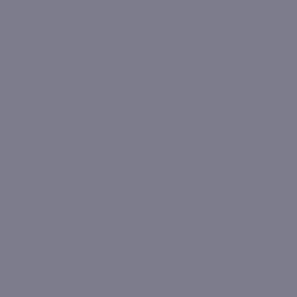 Fort Point Grey RGB 125-125-140 #7D7D8C