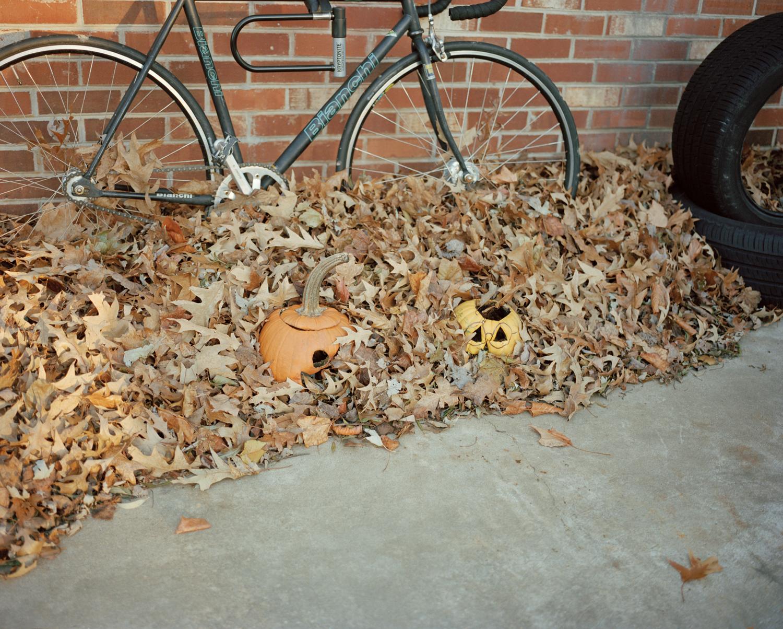 22-rottten pumpkins.jpg