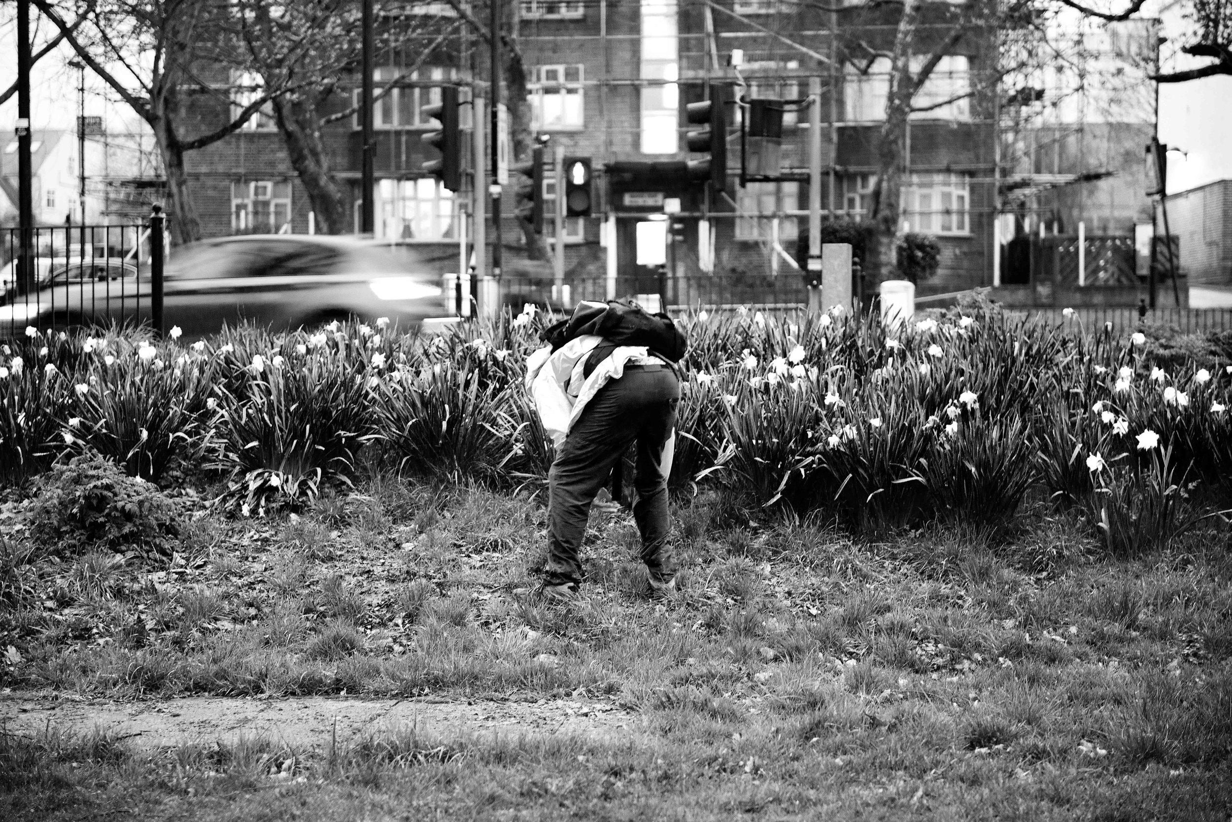Bounds Green (Credit: Hannah Scott)