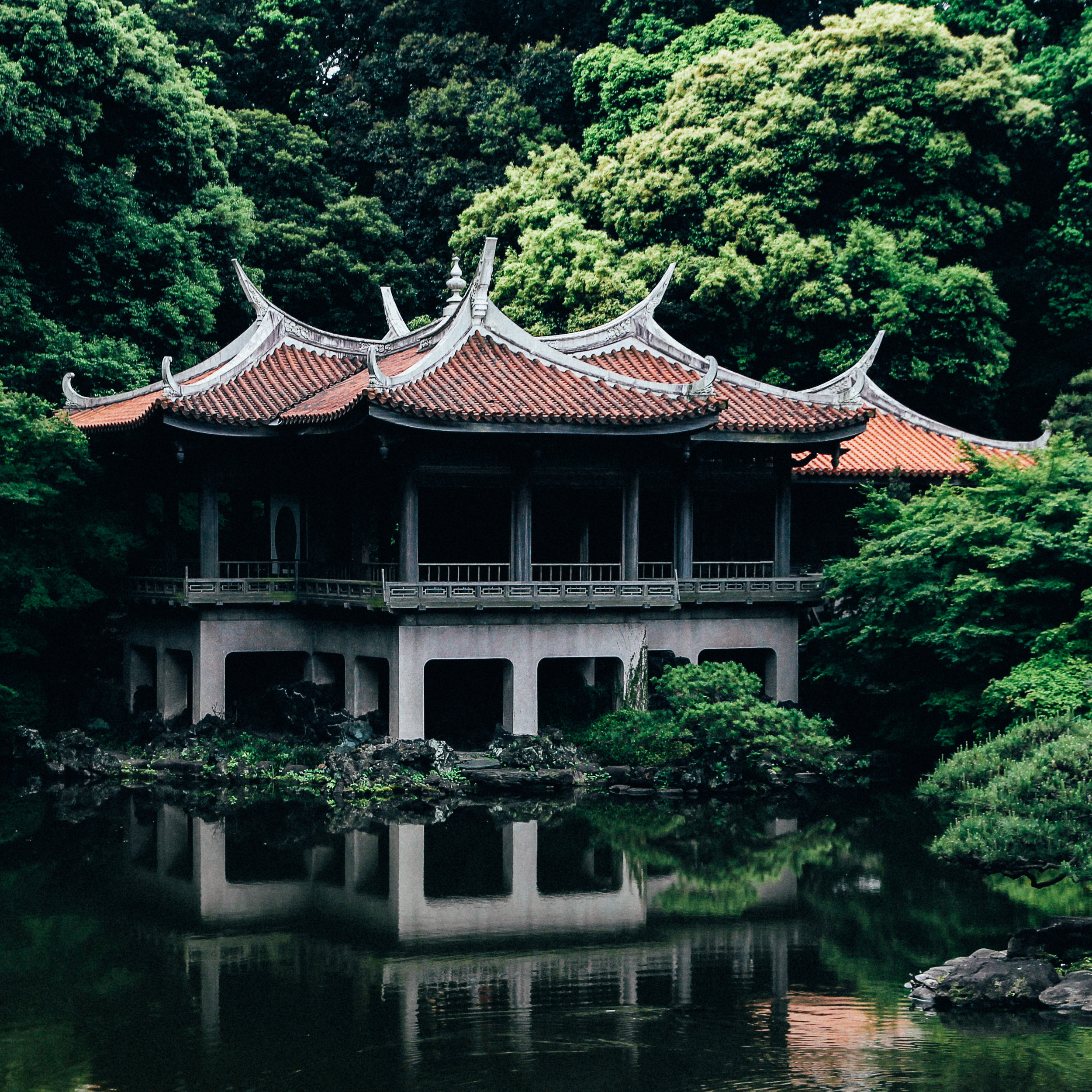 CHINA - Whether it be the Great Wall, Giant Pandas or the Emperor's Palace, China has something for everyone. There are many amazing tour groups that can help make your China experience one you will never forget.