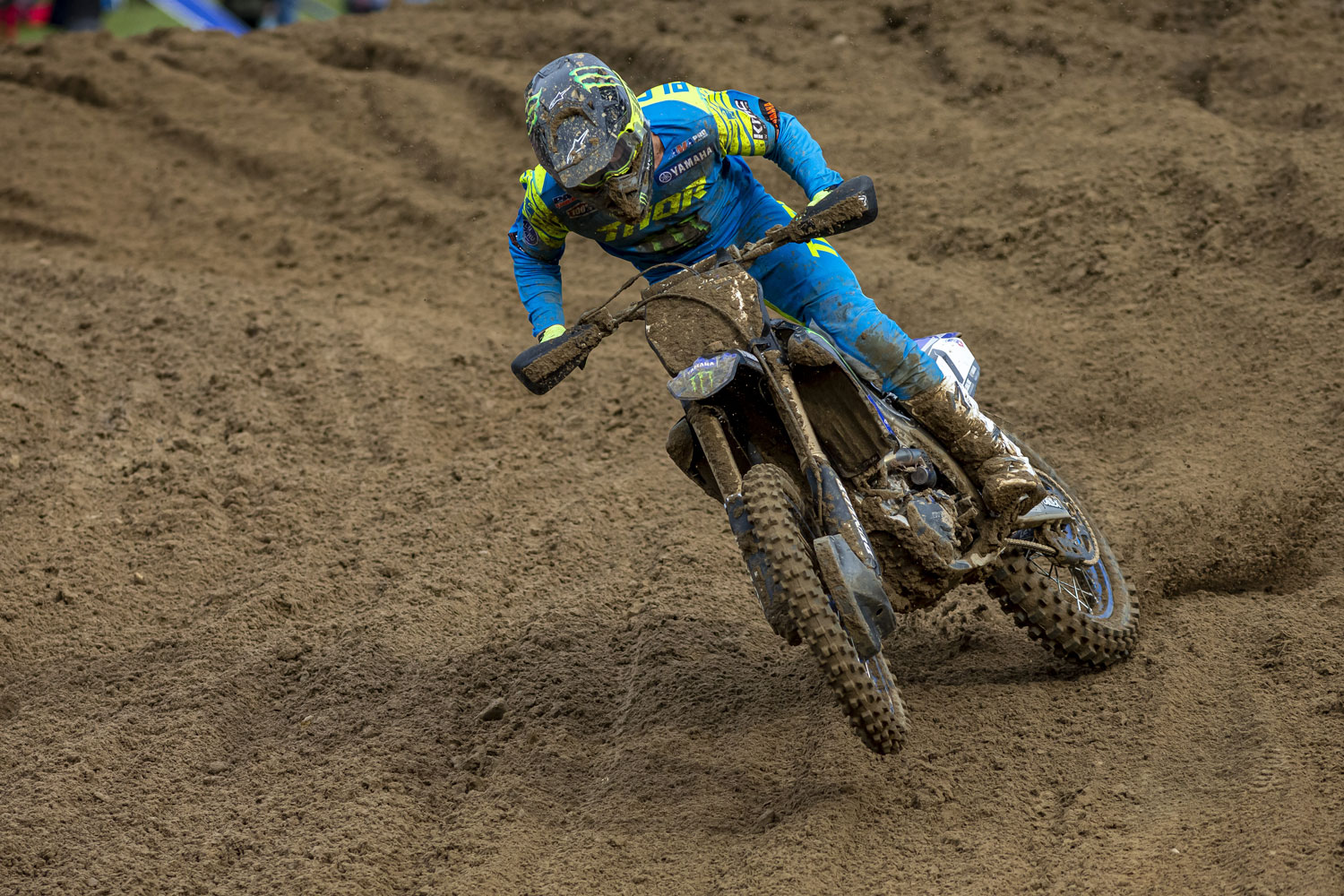 PLESSINGER_2019_SPRING-CREEK-web.jpg