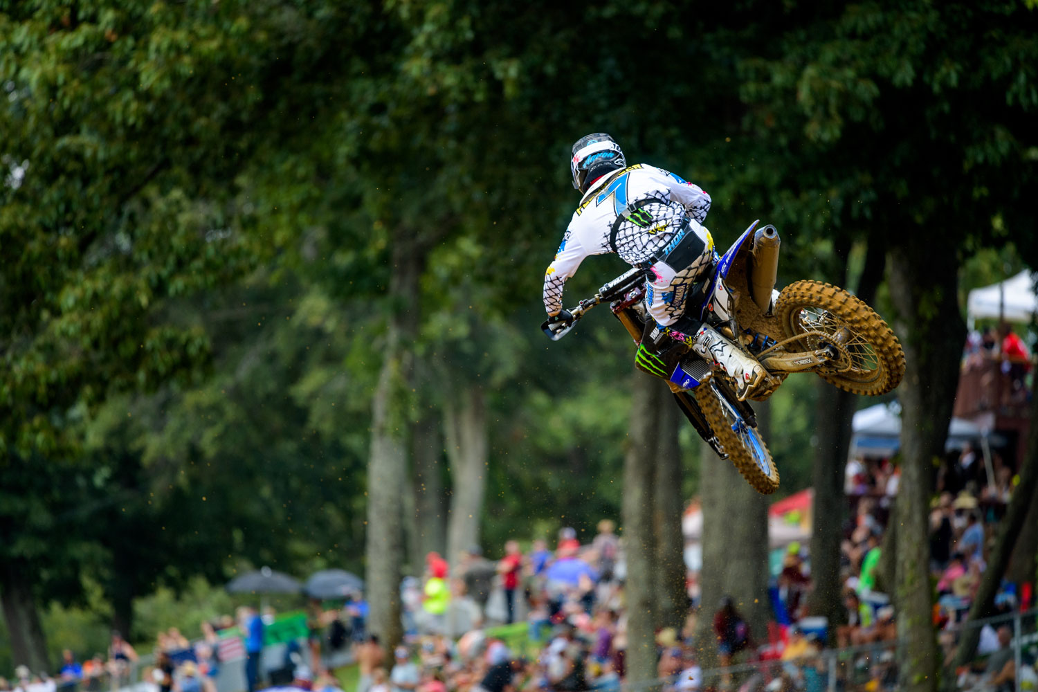 PLESSINGER_2019_BUDDS-CREEK_web.jpg