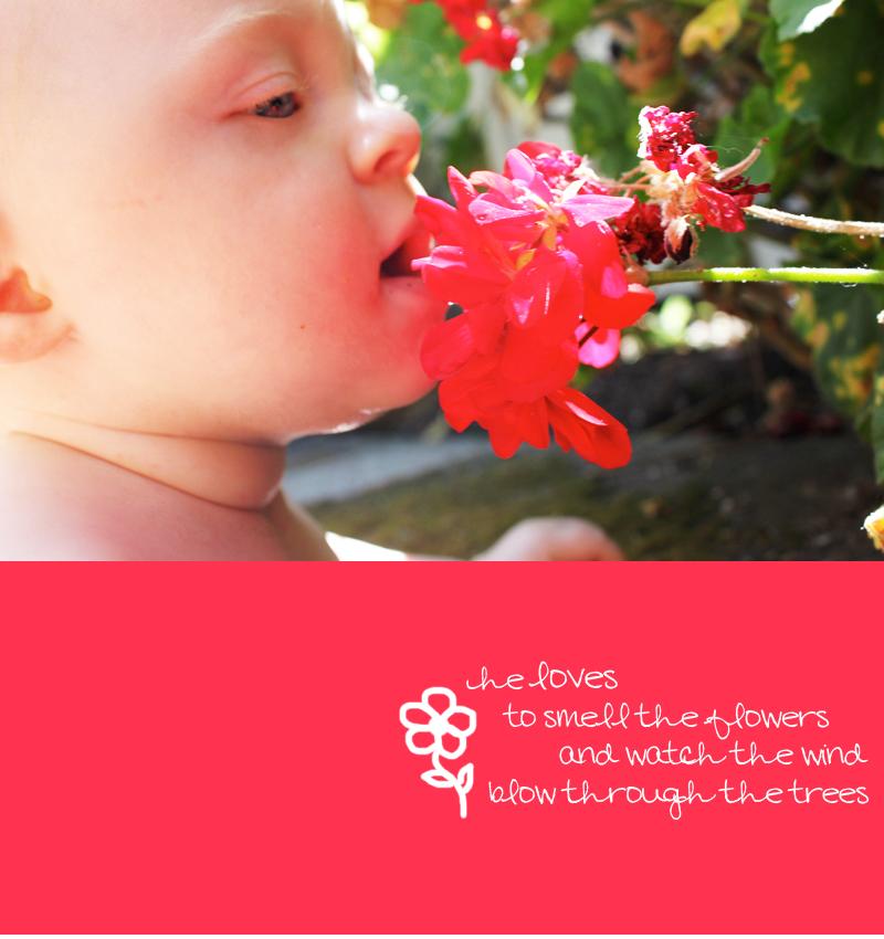 smellflowers.jpg