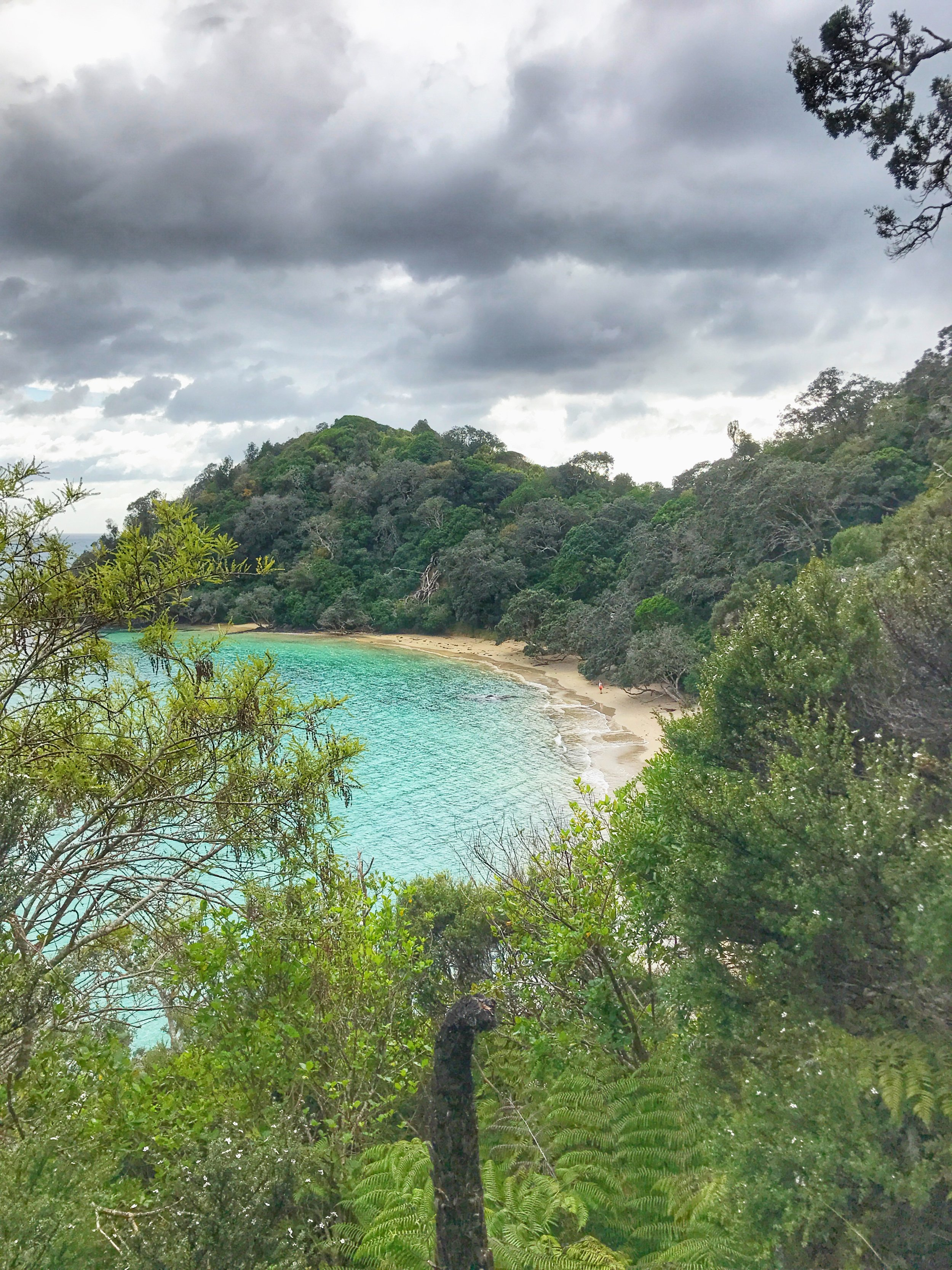 Matapouri Travel Guide Bel and Beau 4.jpg