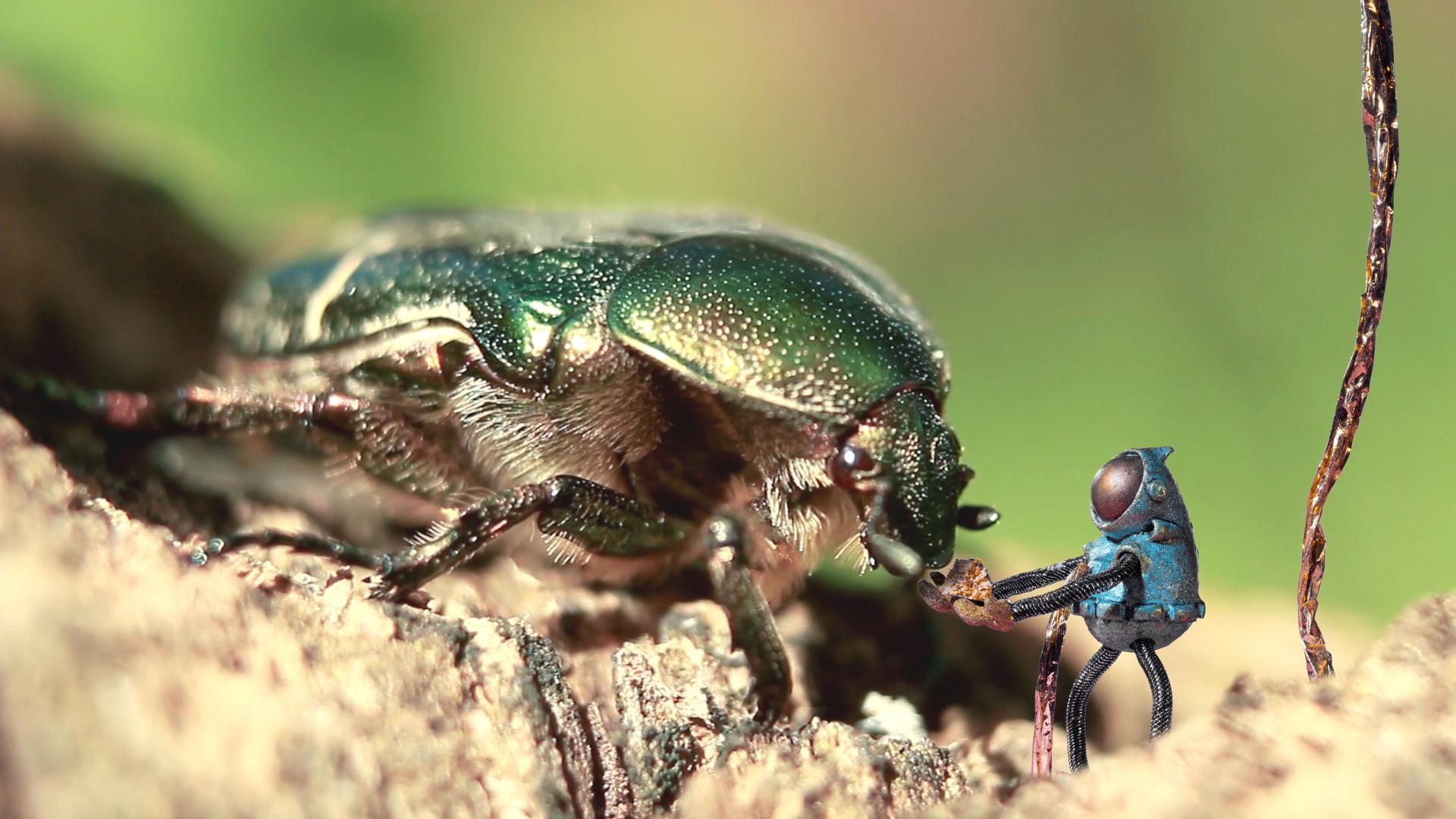 La diminuta alma del astronauta alimentando a un insecto hambriento.