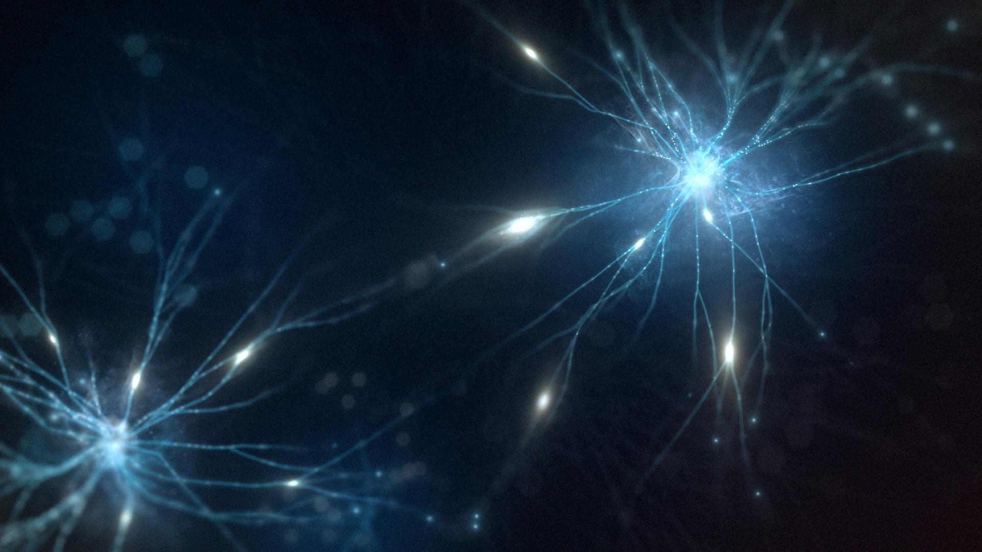 160202_MainComp_Neurons2.jpg