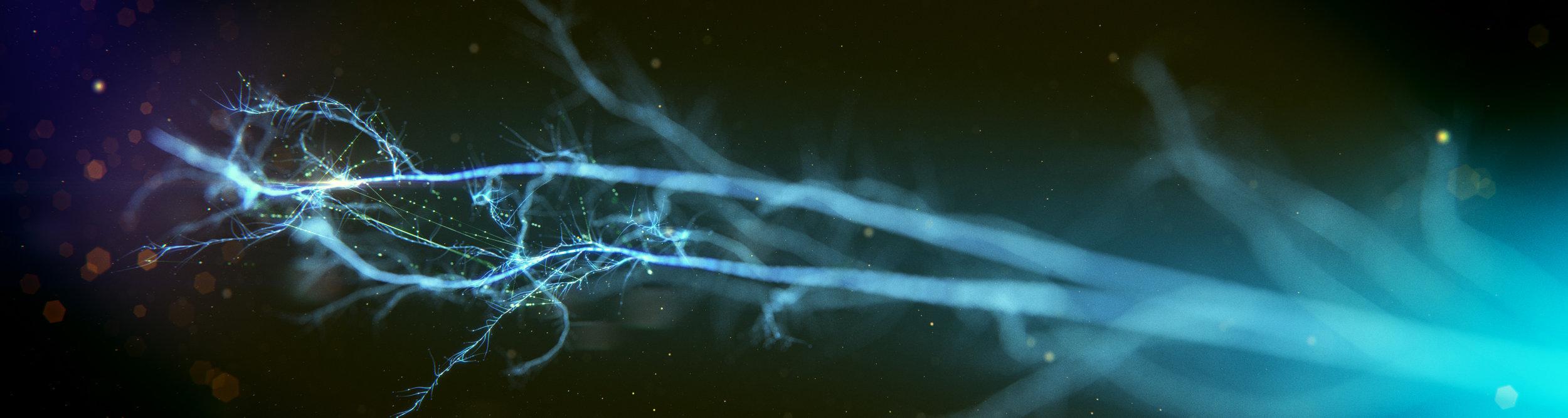 170829_Neuron_v1.jpg