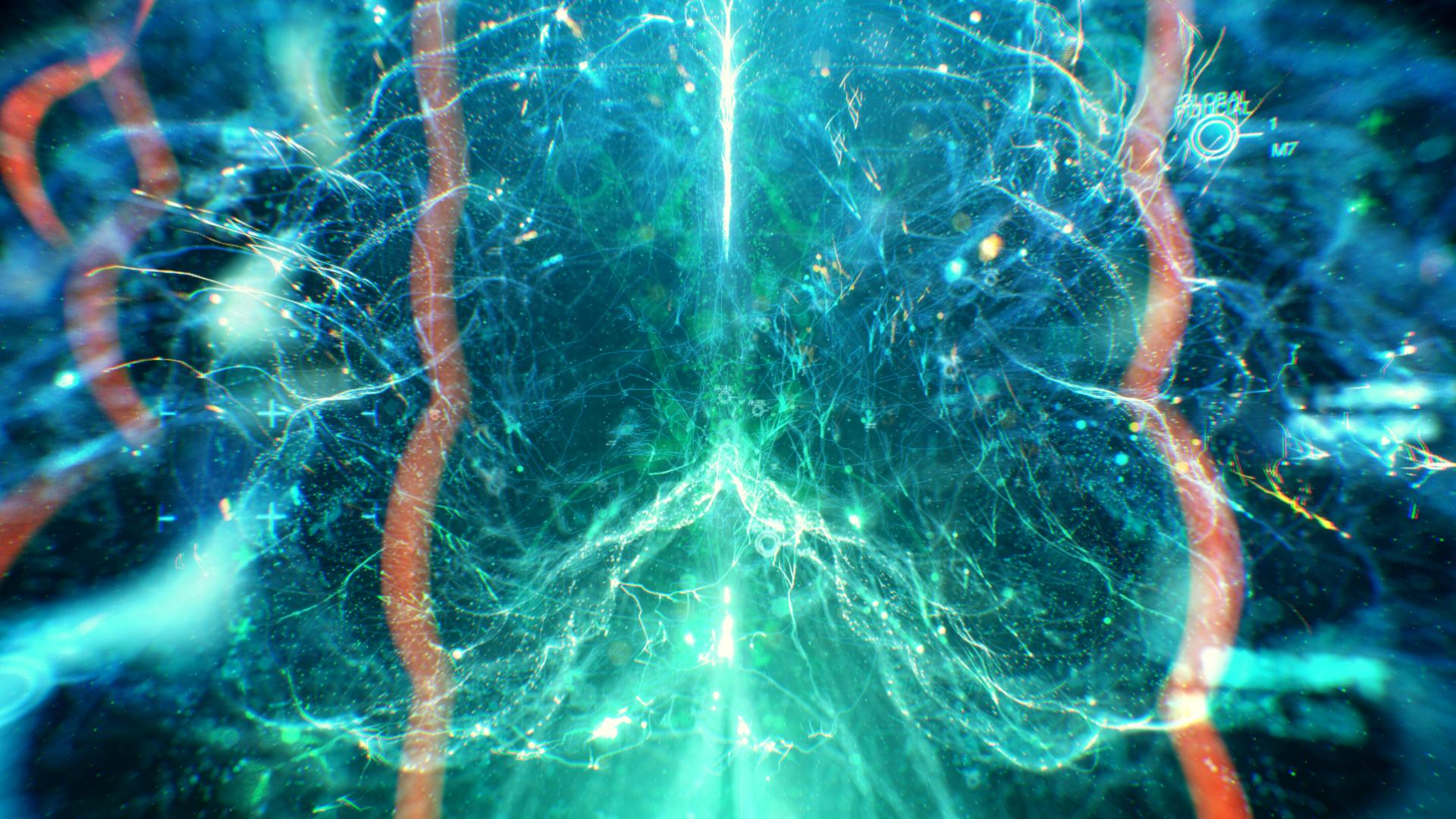 171220_brain_cam6_v4_00030.jpg