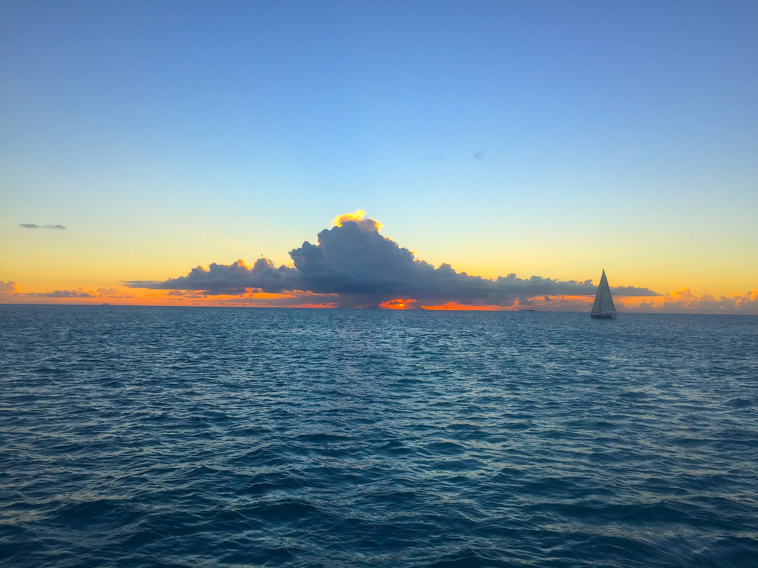Picture taken by Captain Andrew Seligman on one of his Captained Sailing Charters