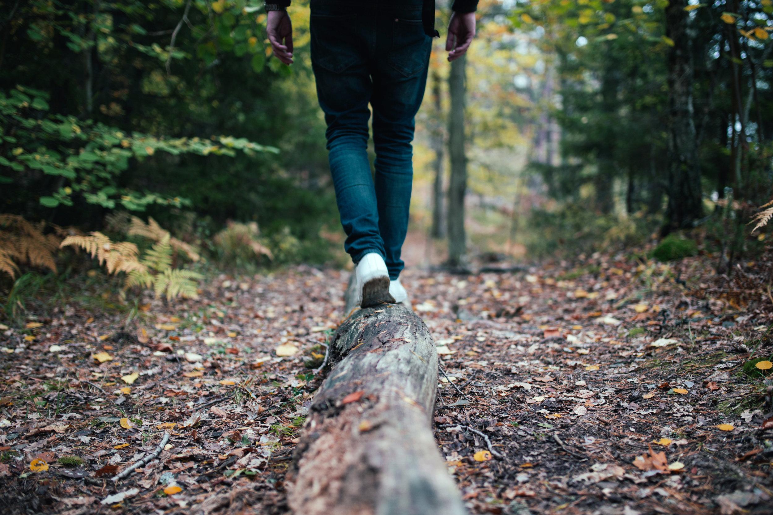 Legs of person walking along a fallen log on wooded trail