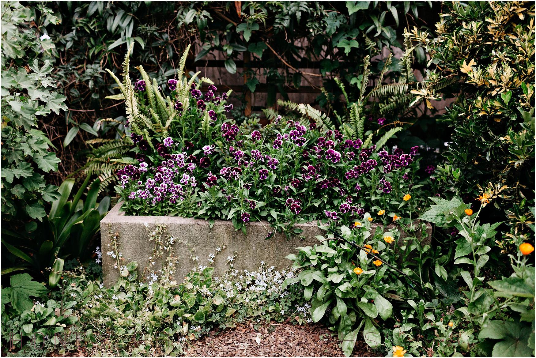 cambria-san-lois-obispo-wedding-garden-intimate45.jpg