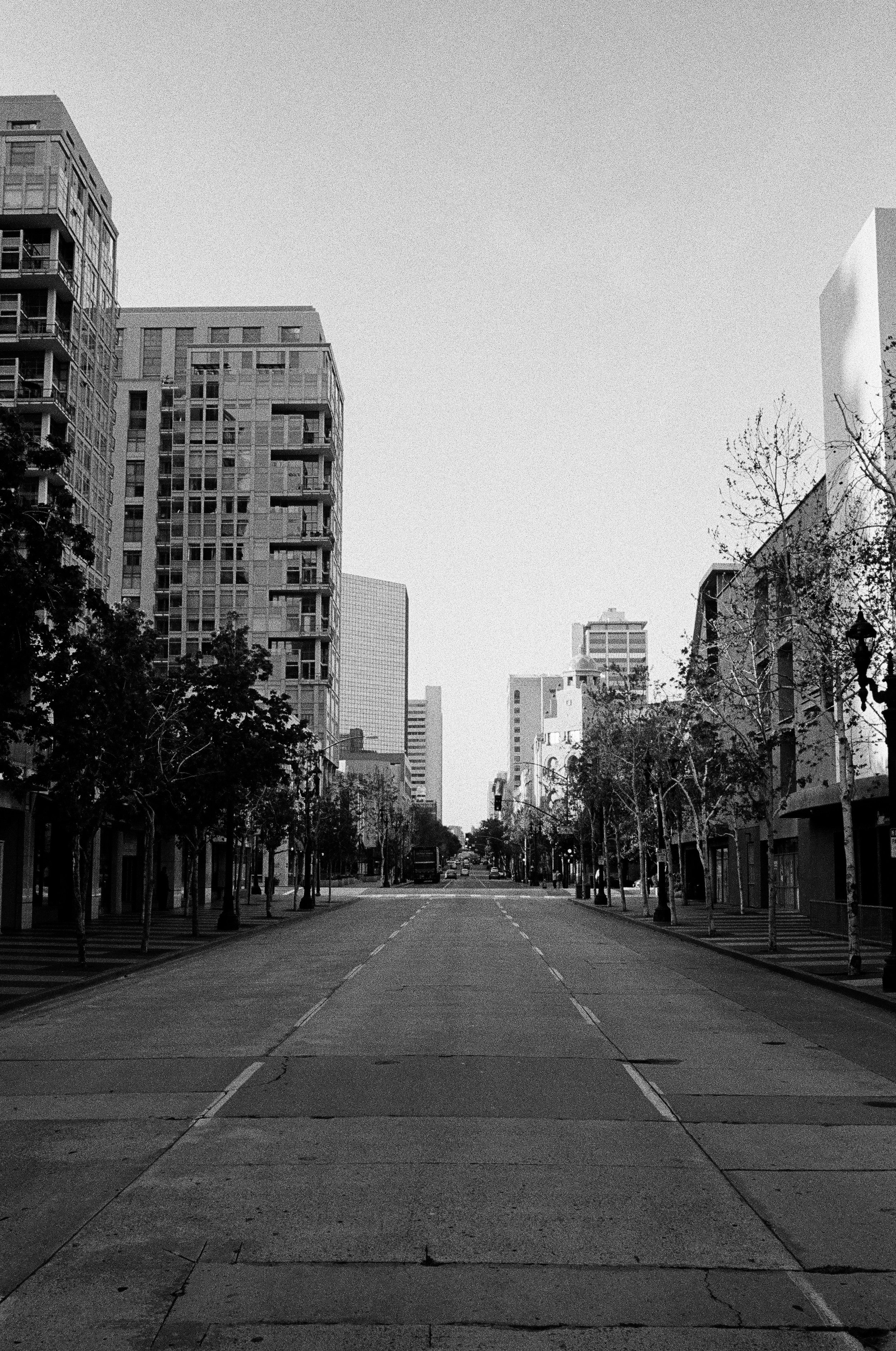 400tx_1669-resized-35.jpg