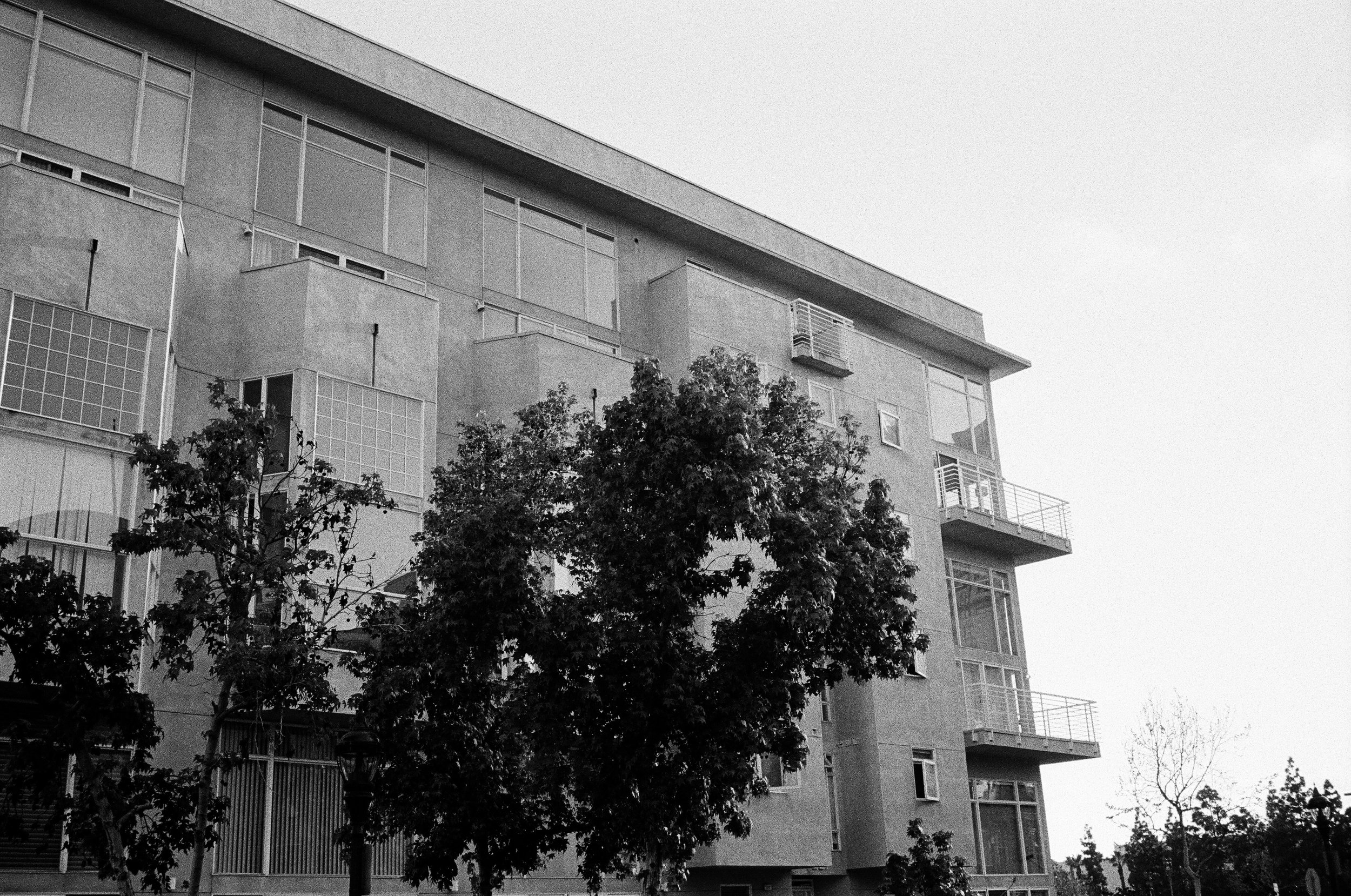 400tx_1669-resized-12.jpg
