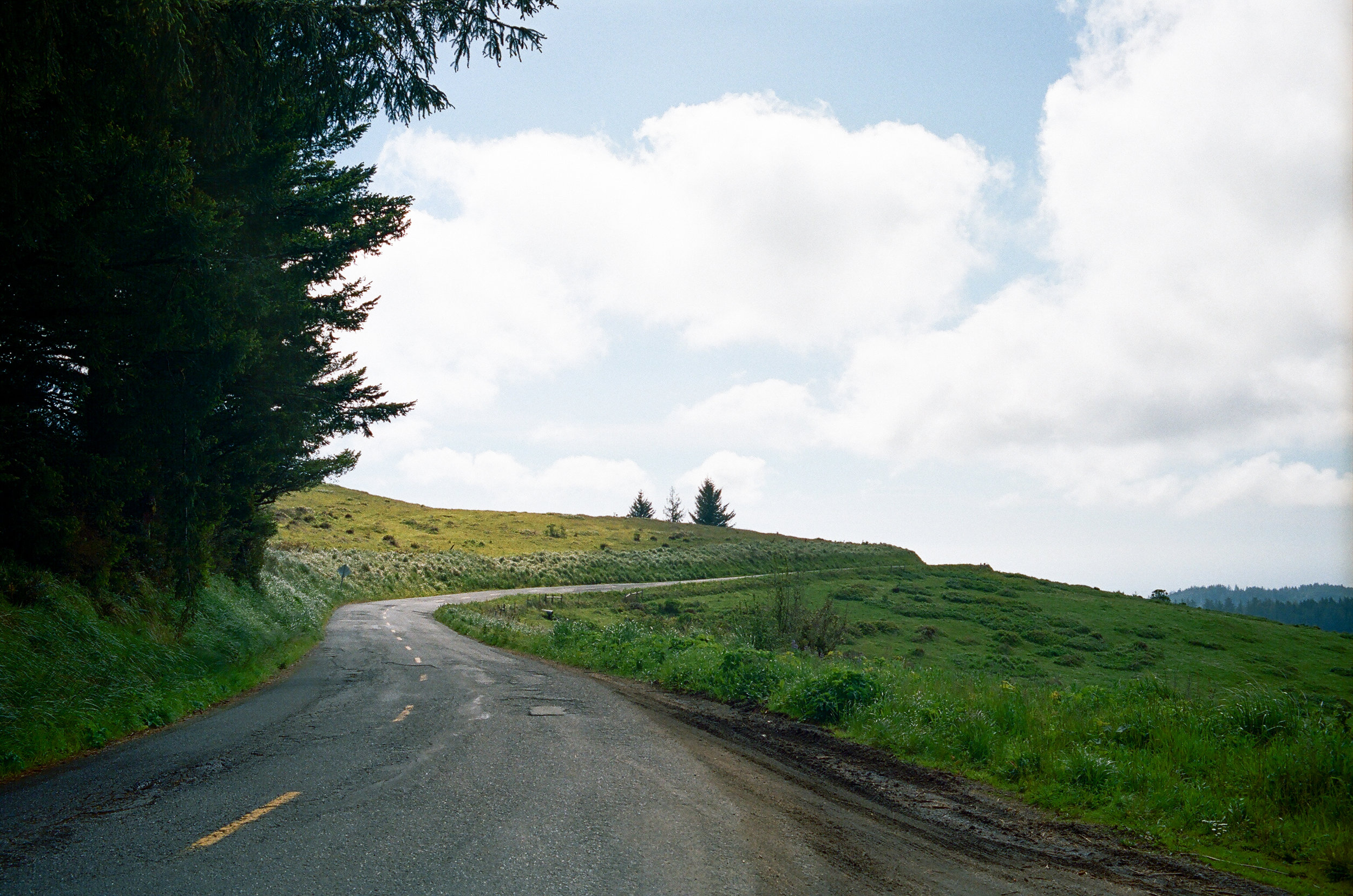Lost Coast_Film_ 3481-8.jpg