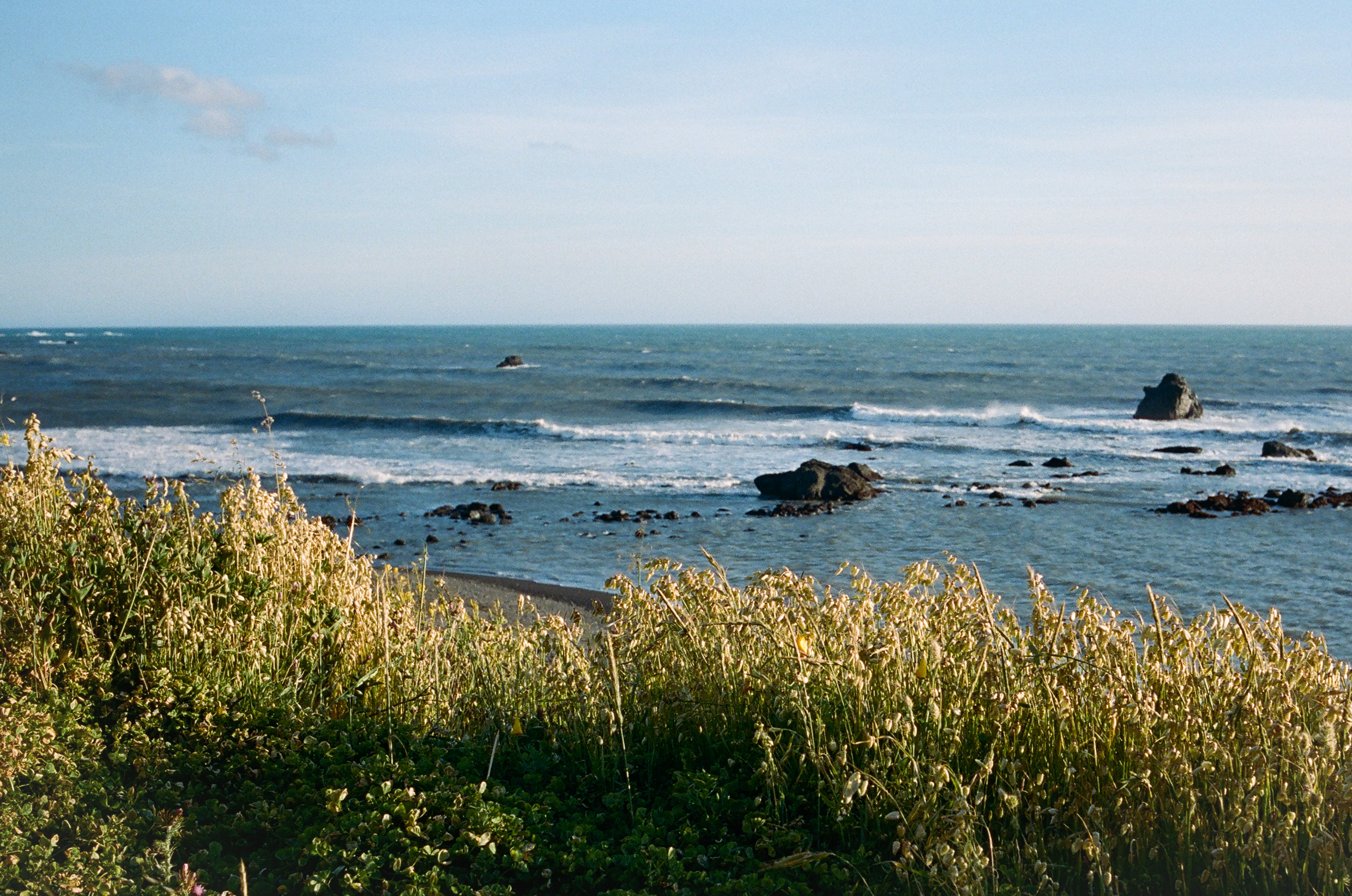 Lost Coast_Film_ 3481-17.jpg
