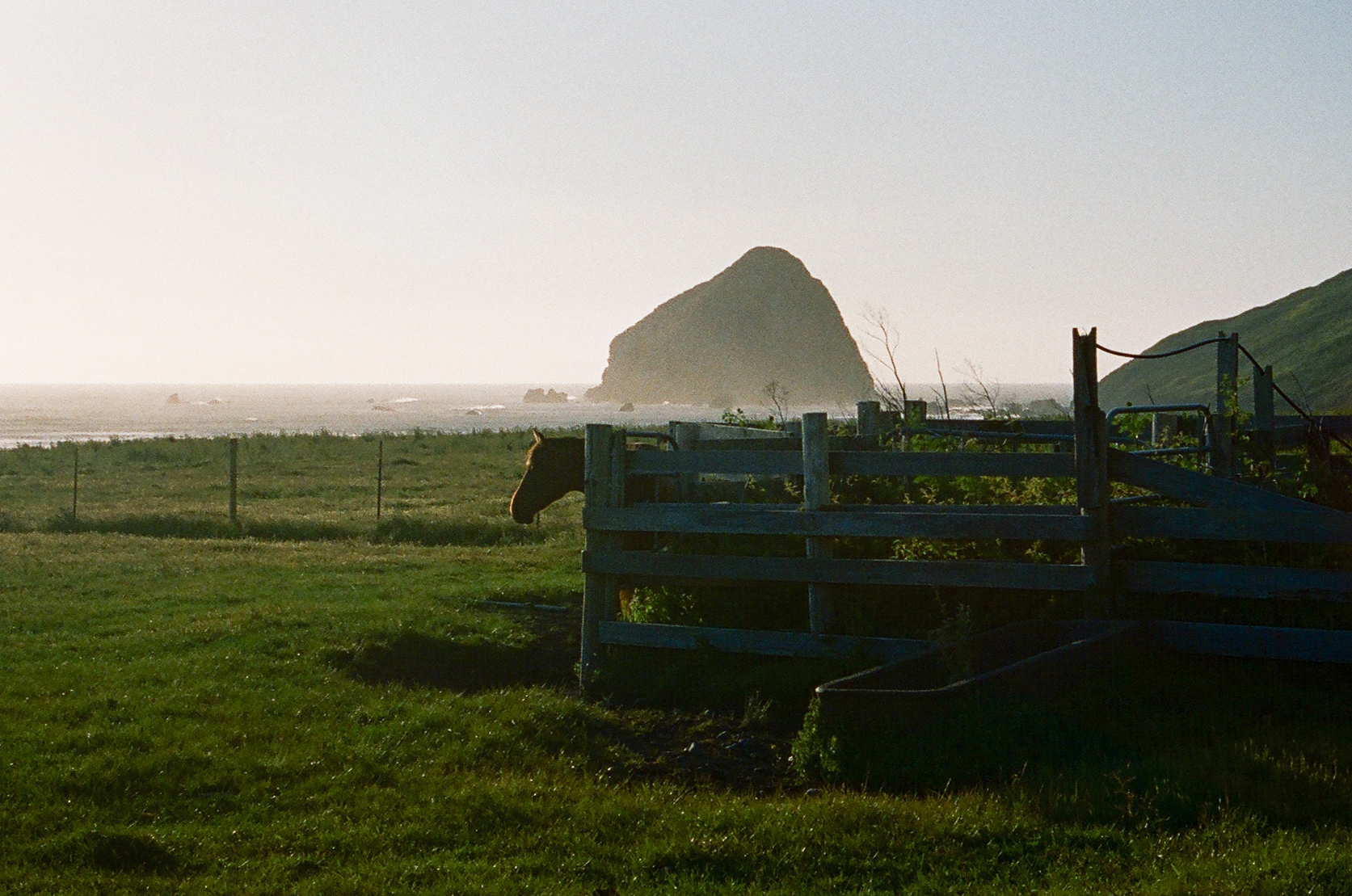 Lost Coast_Film_ 3481-19.jpg