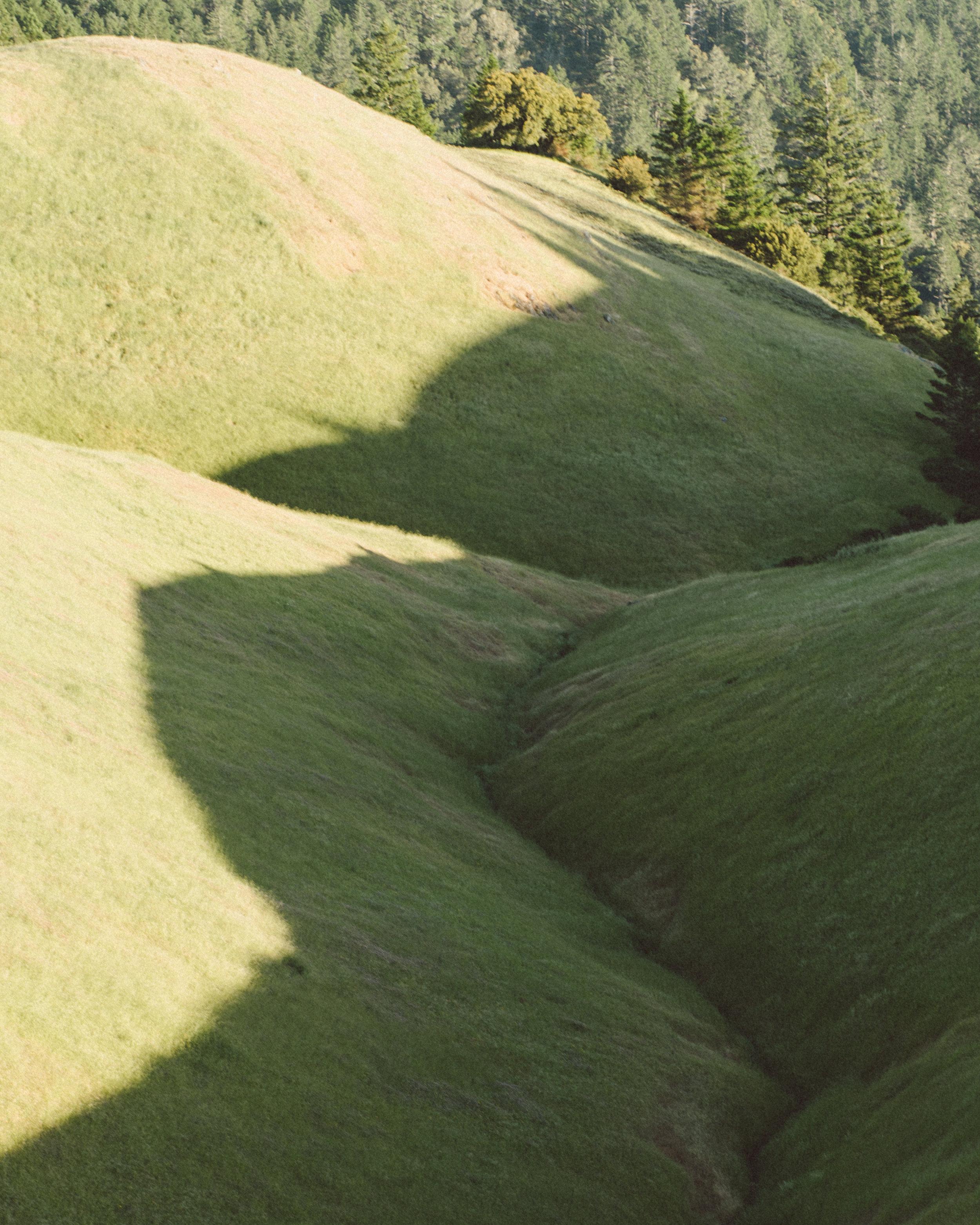 Mt_Tam_Dom_Jack_Web-5.jpg