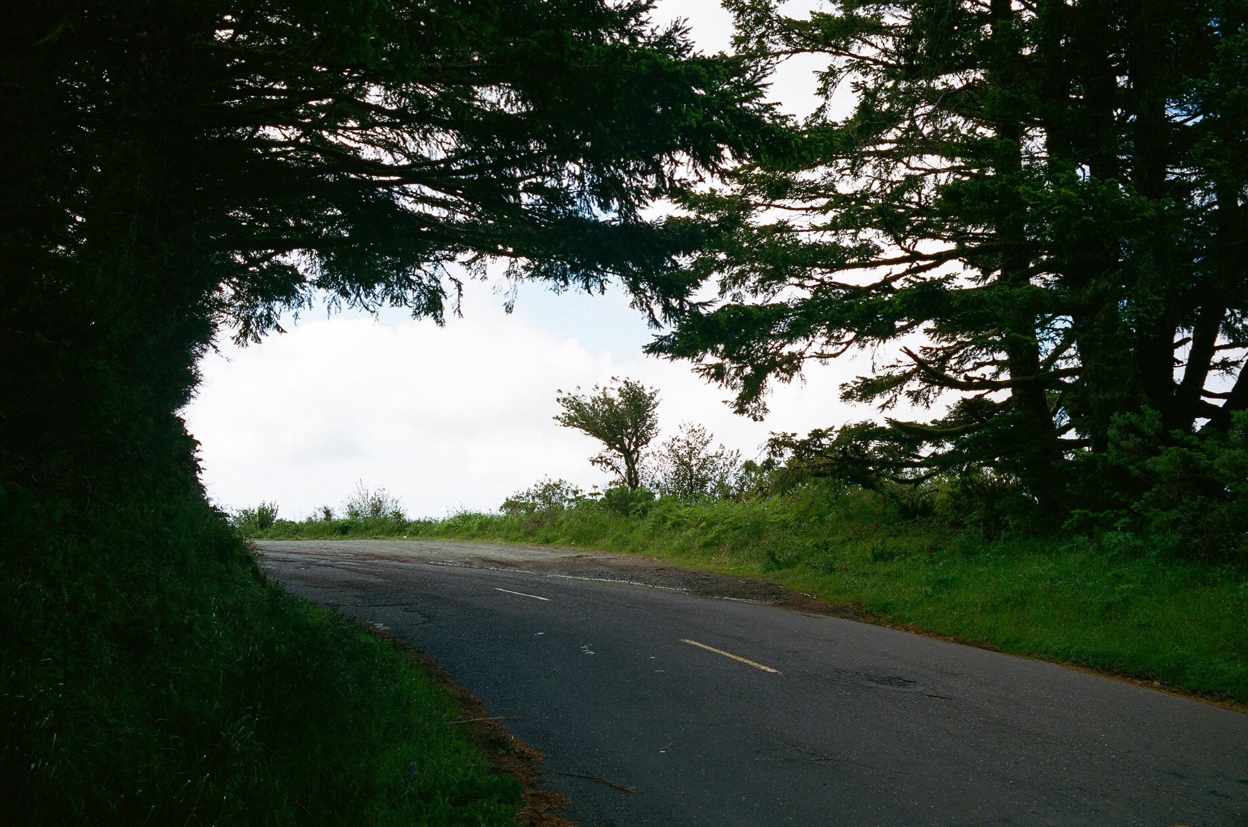 Lost Coast_Film_ 3481-9.jpg
