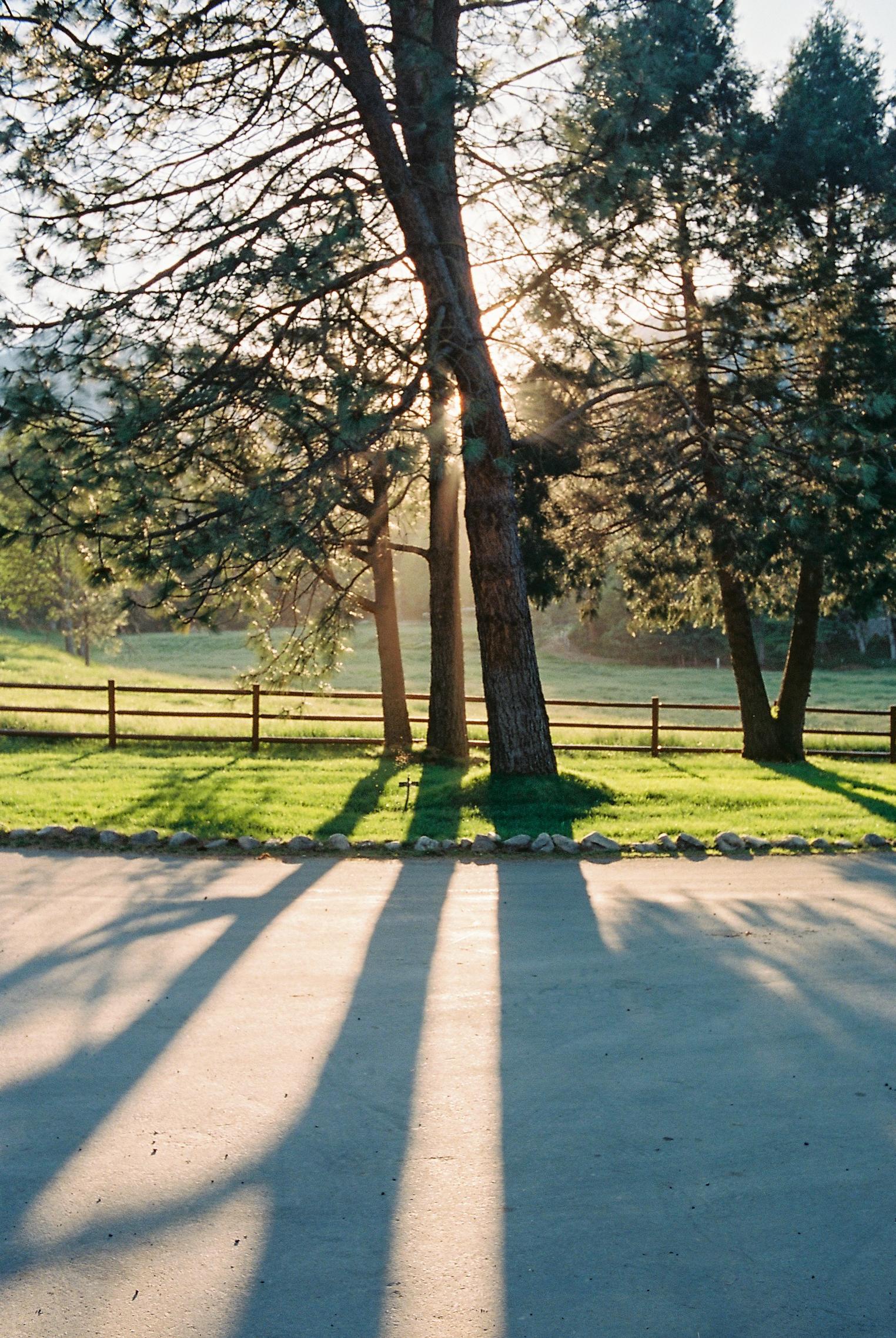JH Ranch_Roll_2301-13.jpg
