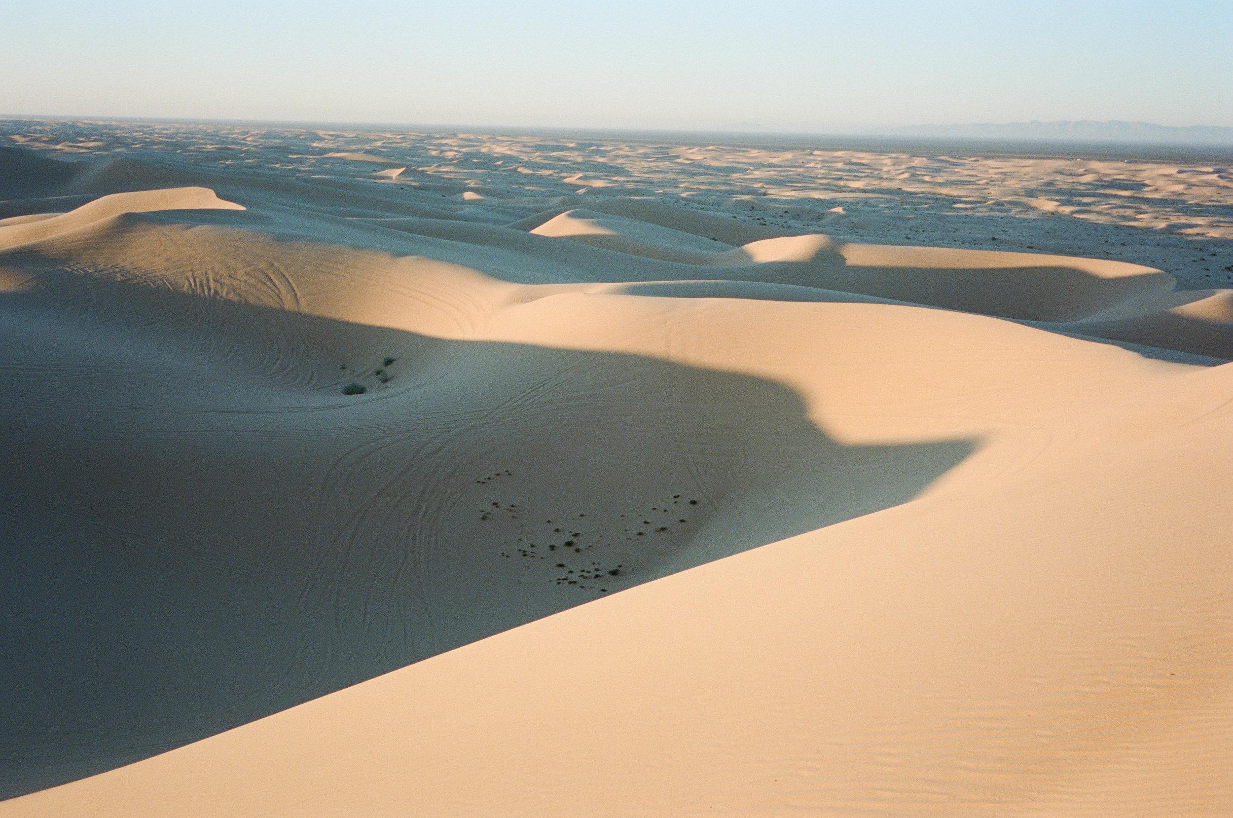 Sand Dunes_#9871-9.jpg